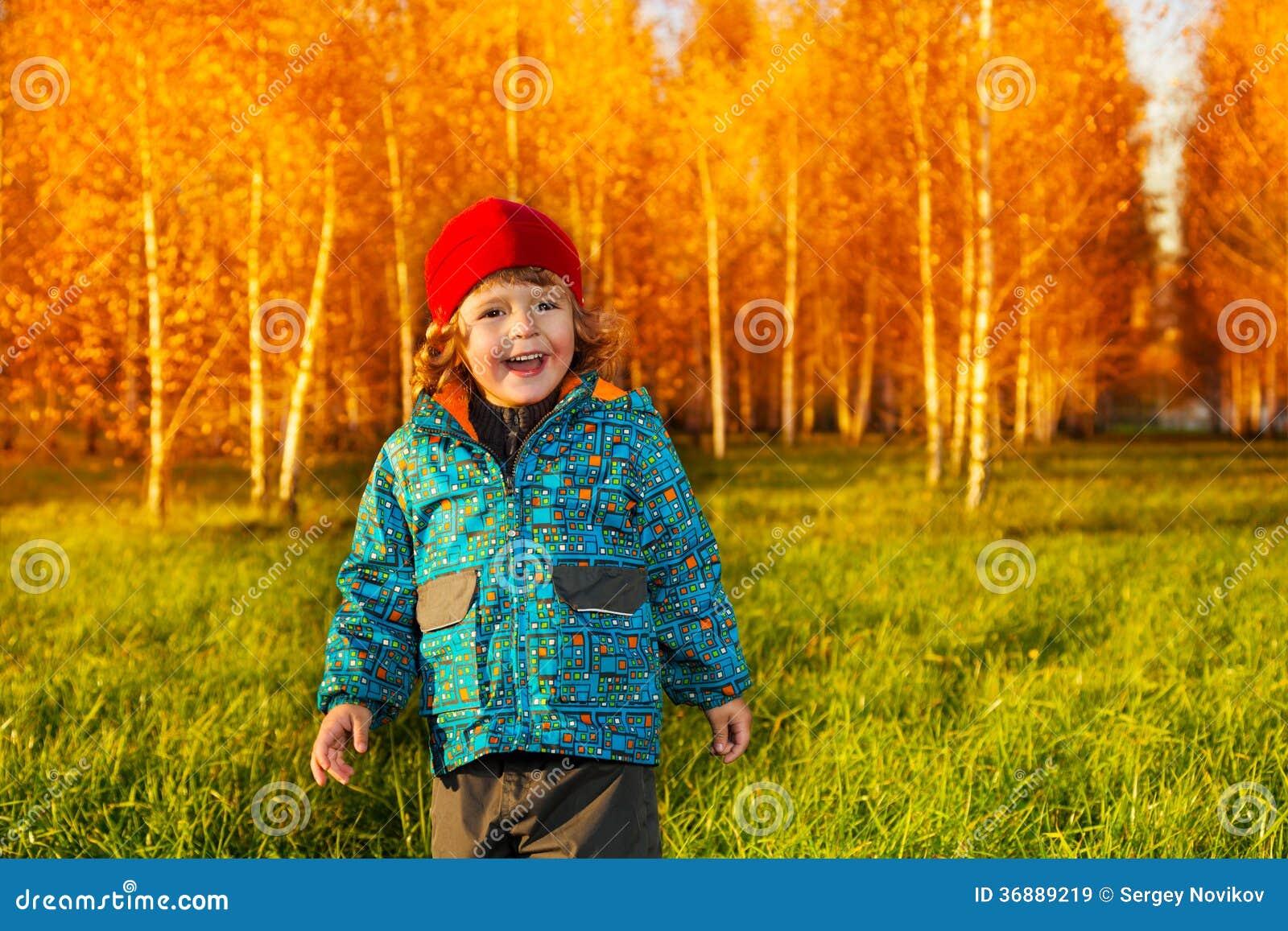 Download Ragazzino Di Risata Nel Parco Immagine Stock - Immagine di infanzia, autunno: 36889219