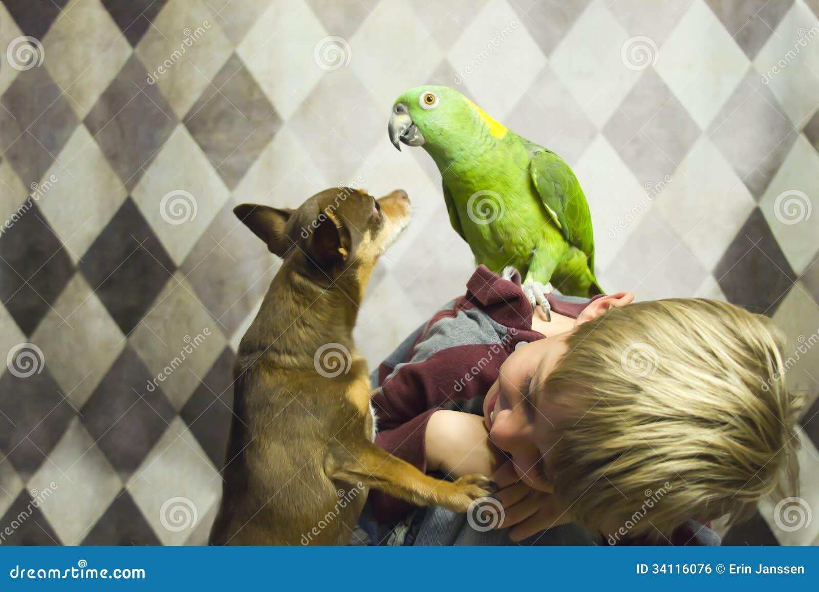 Ragazzo con il piccoli cane e pappagallo