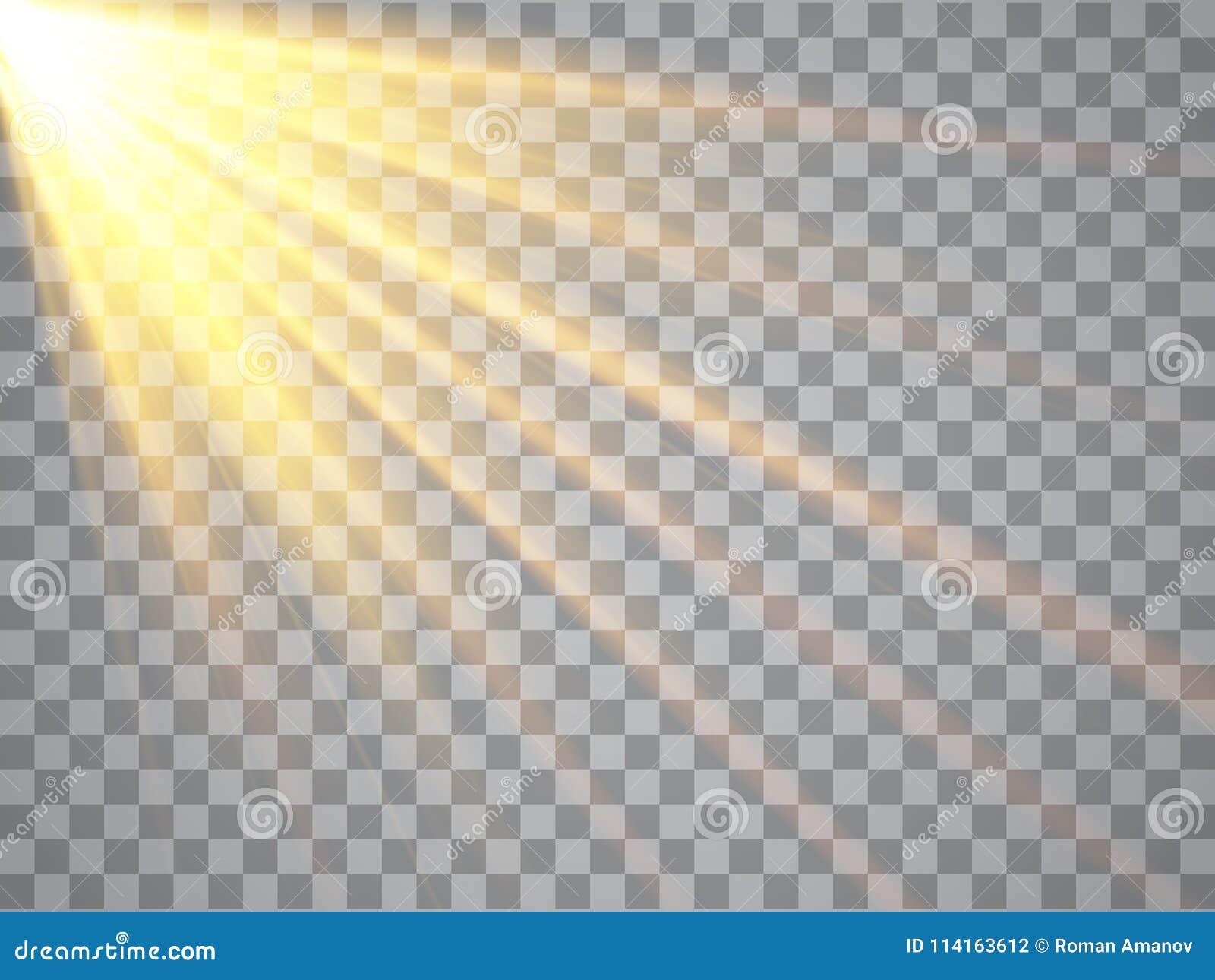 Raggi Di Luce Su Fondo Trasparente Riflettore Dorato Vettore
