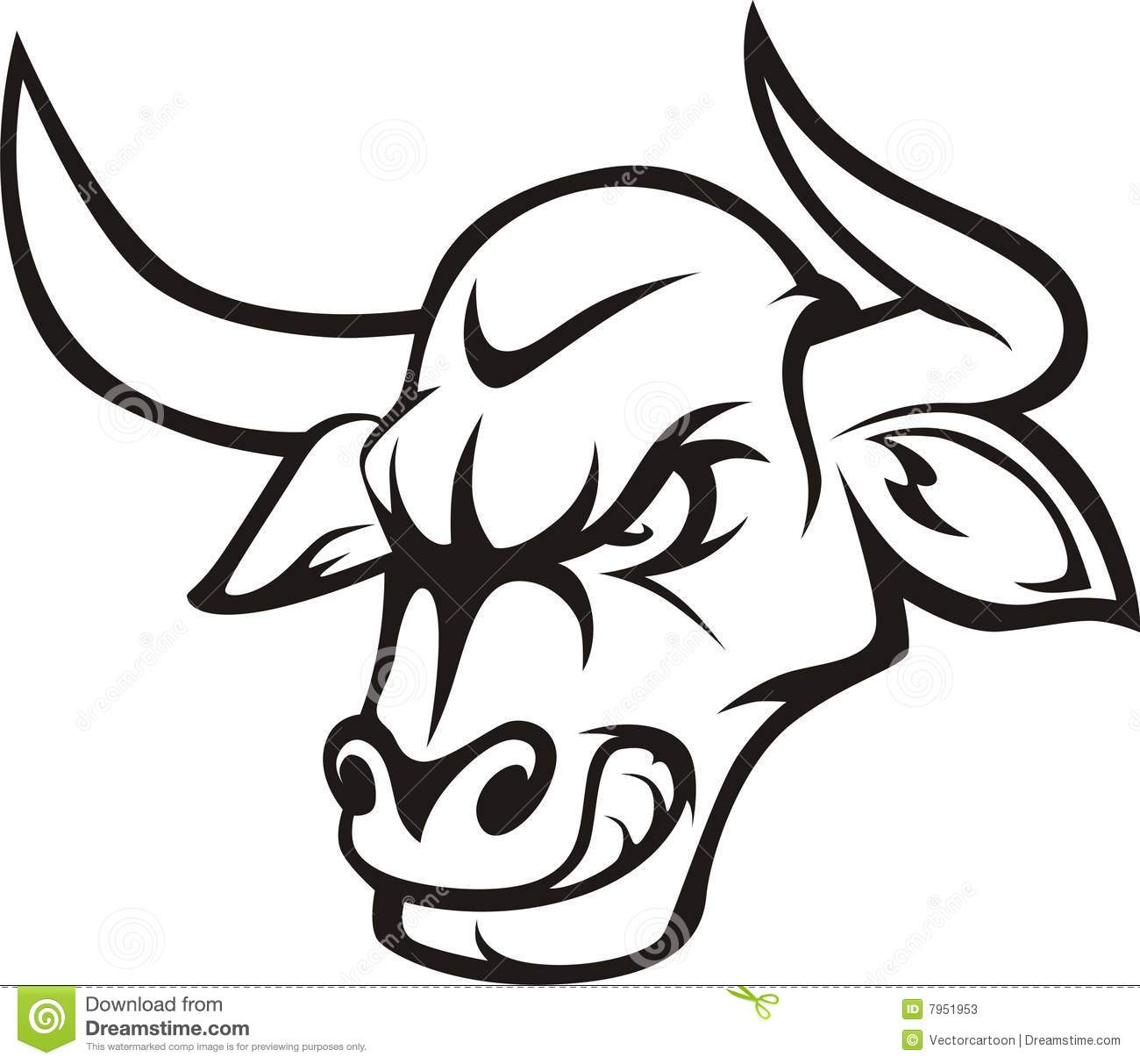 It is a photo of Sassy Bull Head Drawing
