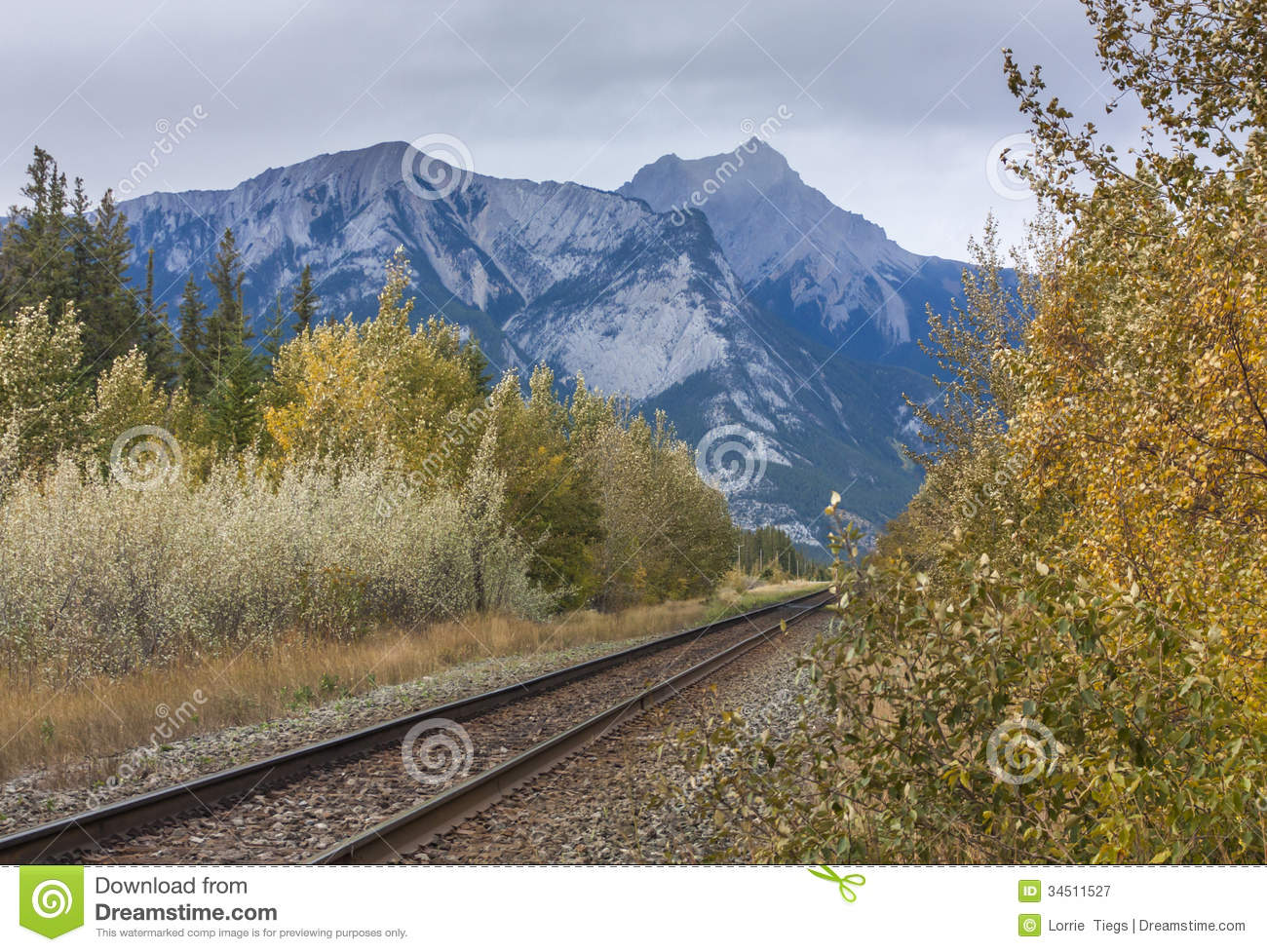 Railroad Tracks Through Mountain Royalty Free Stock Photography ...