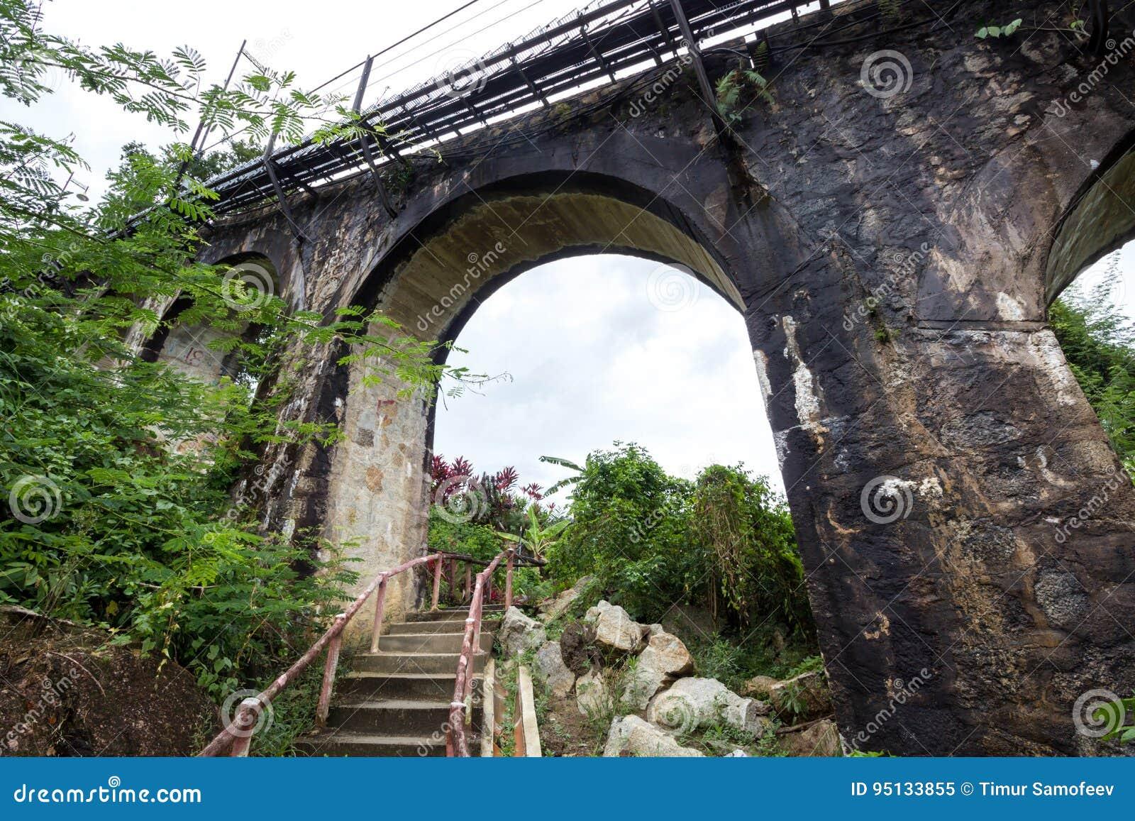 Railway bridge in the forest
