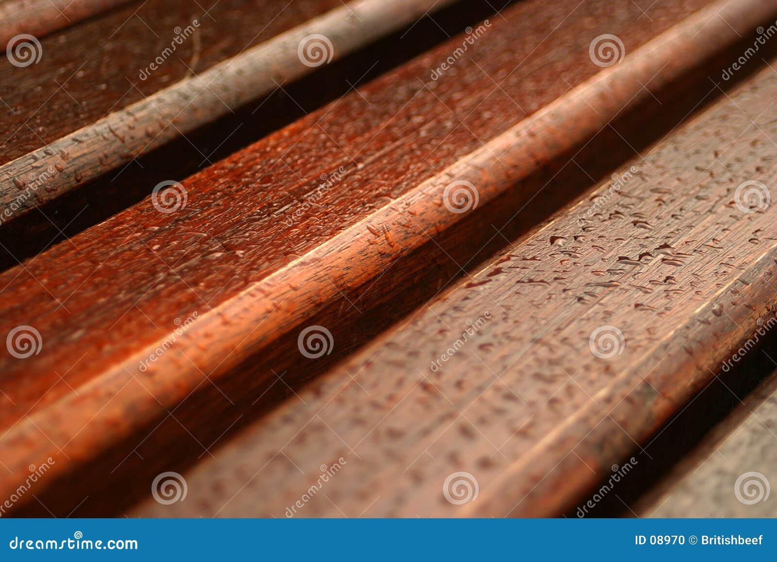 Rain on bench