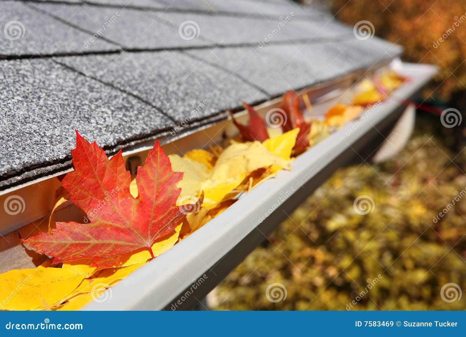 Rain Gutter Full Of Leaves Royalty Free Stock Images