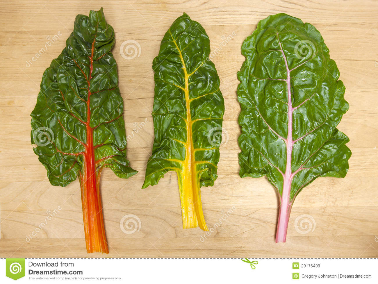 Rainbow Chard Leaves Stock Image Image Of Freshness 29176499