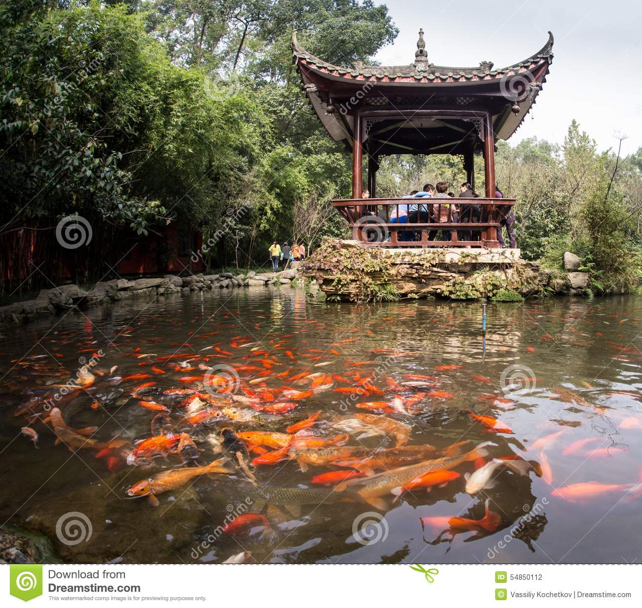 Rainbow fish in the chinese pond stock photo image of for Koi pond quezon city
