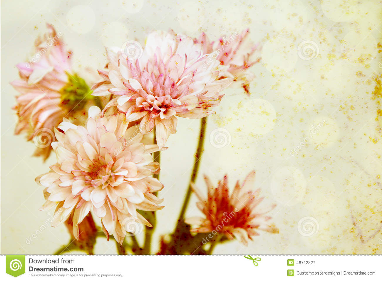 Download A rainbow of flowers. stock image. Image of design, abstract - 48712327