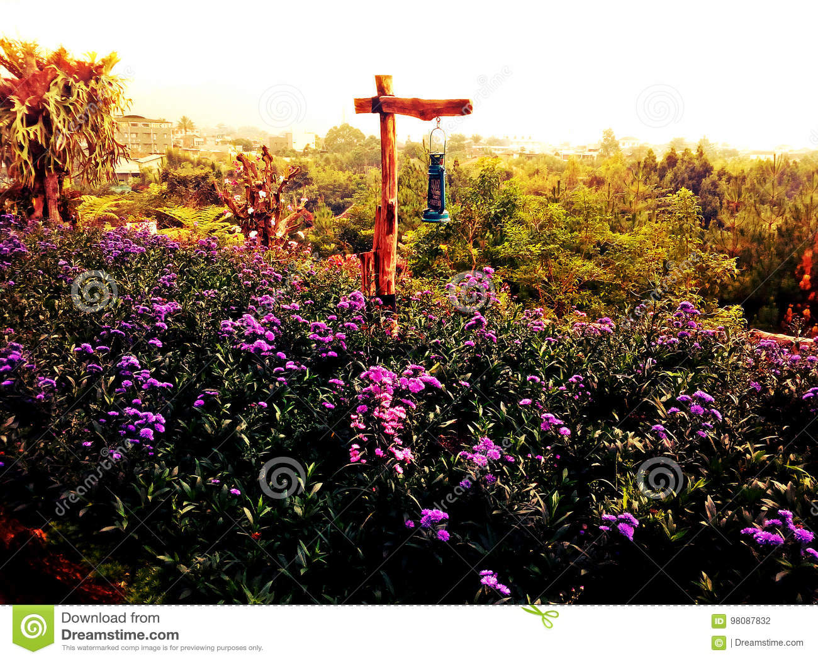 Rainbow Garden stock photo. Image of bandung, java, garden ...