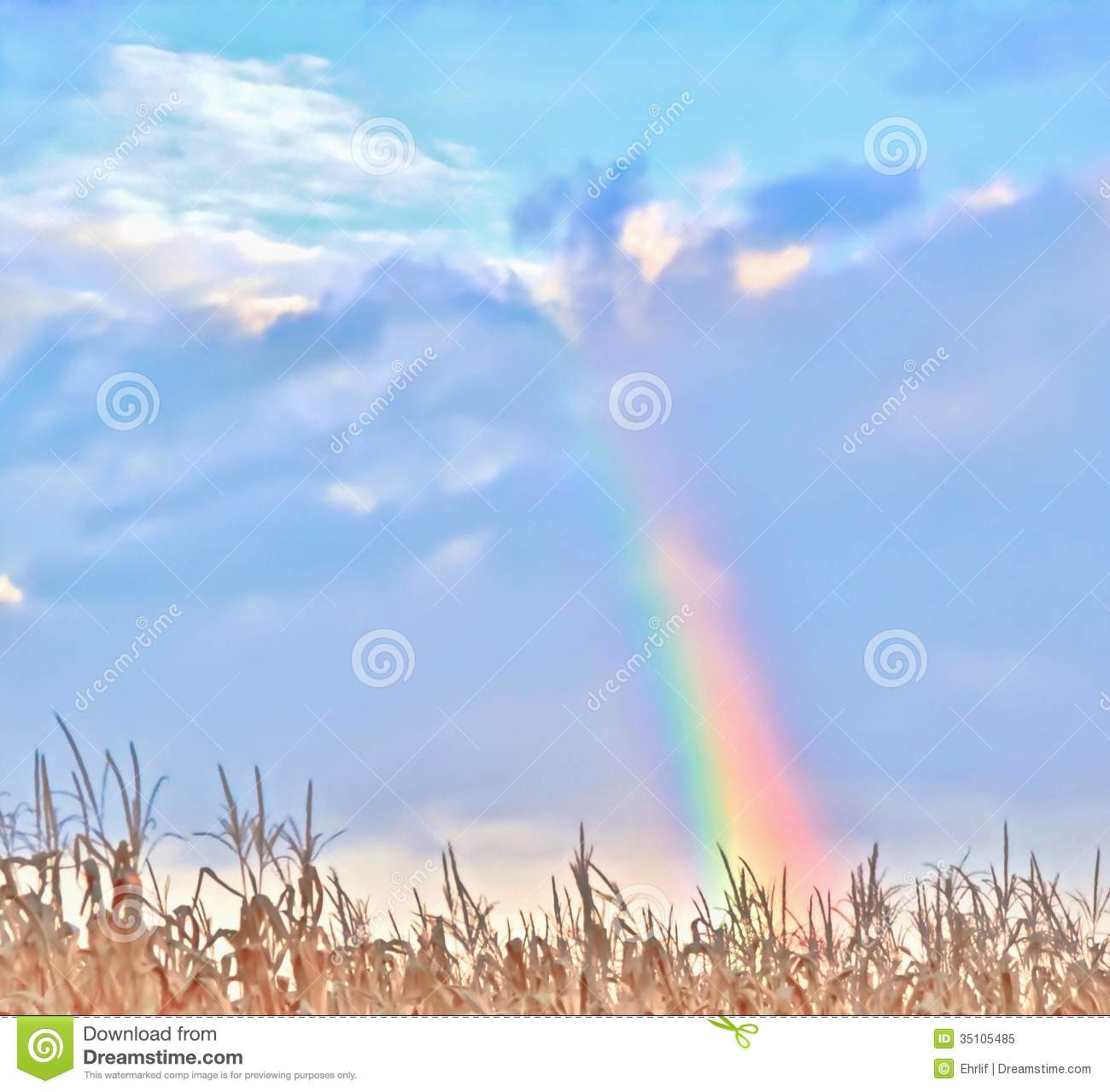 Forum on this topic: Winifred Shotter, rainbow-harvest/