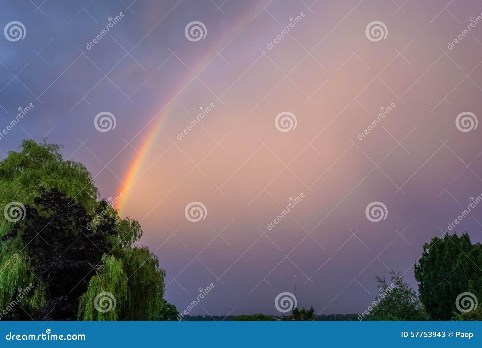 Israel Kamakawiwo'ole - Over the Rainbow Lyrics