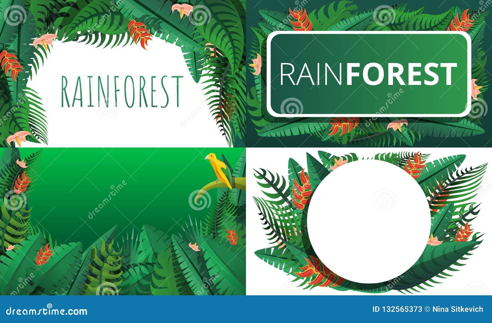 Rainforest banner set, cartoon style