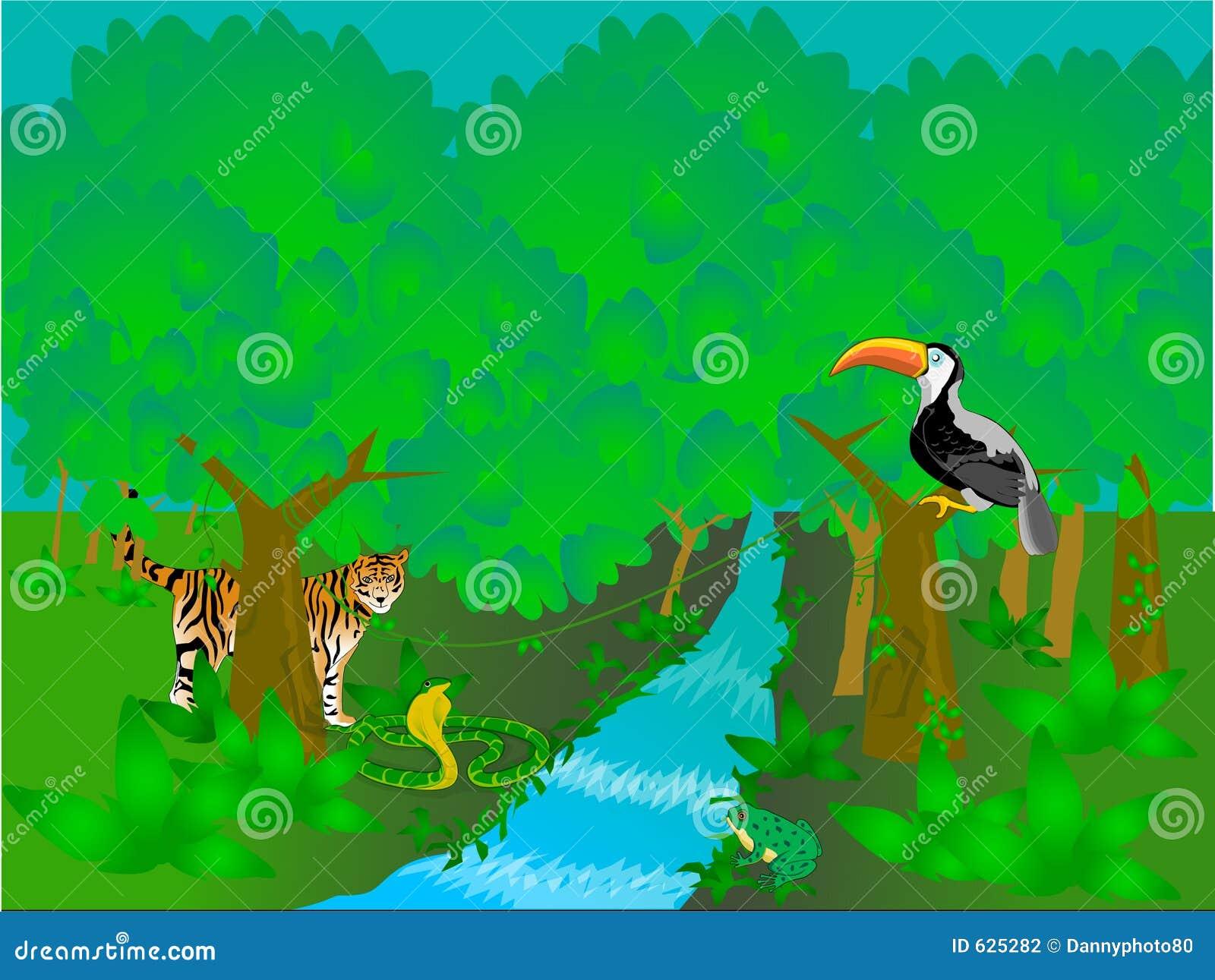 temperate rainforest clipart wwwimgkidcom the image
