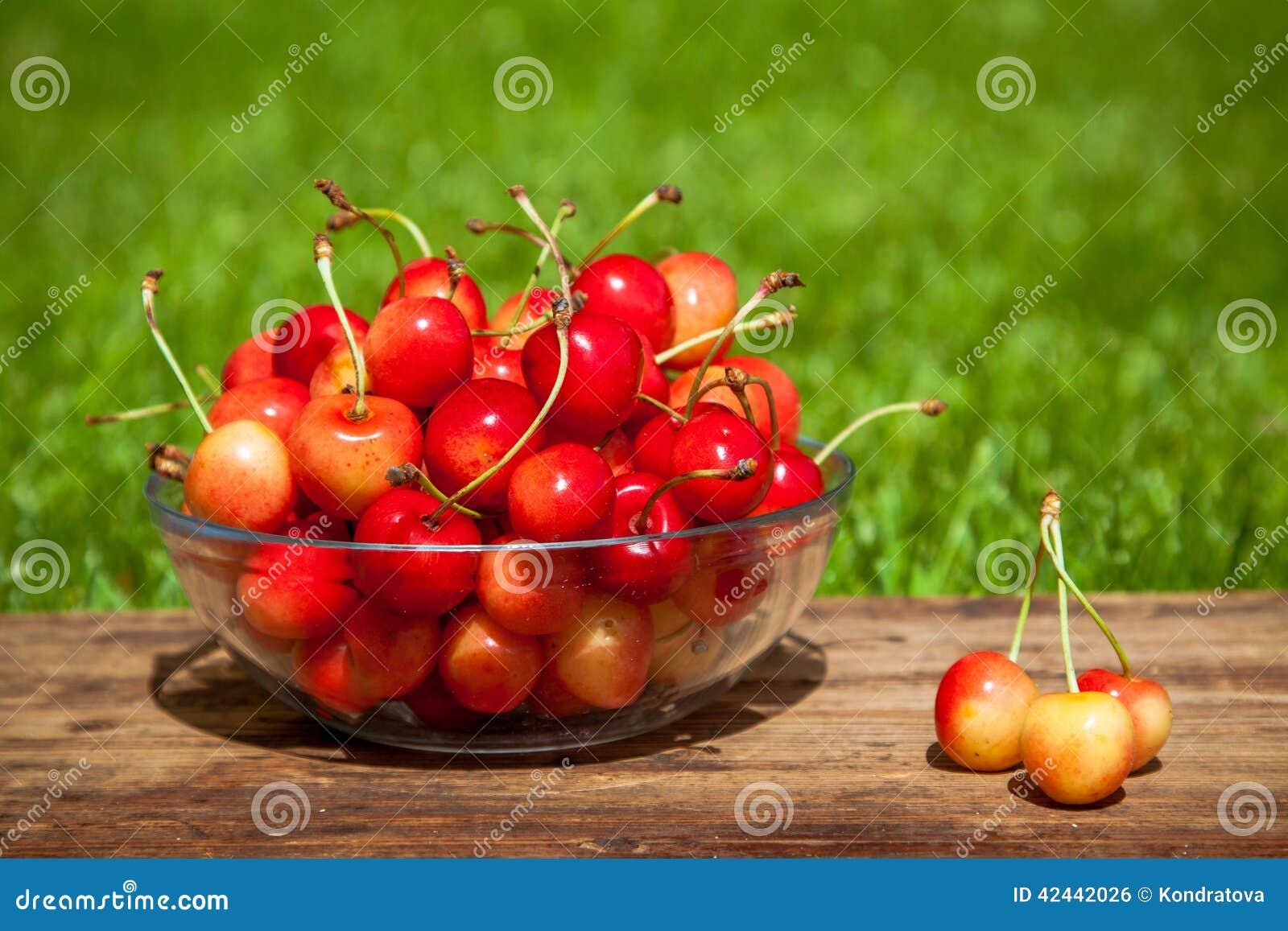Rainier Cherries en un cuenco en hierba verde