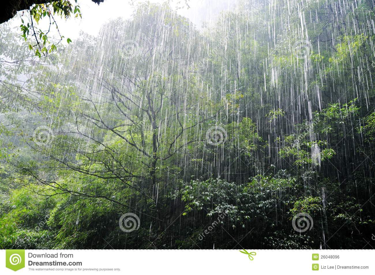 raining heavily The phrase 'it's raining cats and dogs' appeared in some english textbooks fifty or more years ago, giving people the impression that we say this all the time whenever the topic of english idioms arises, somebody always gives this as the first example.