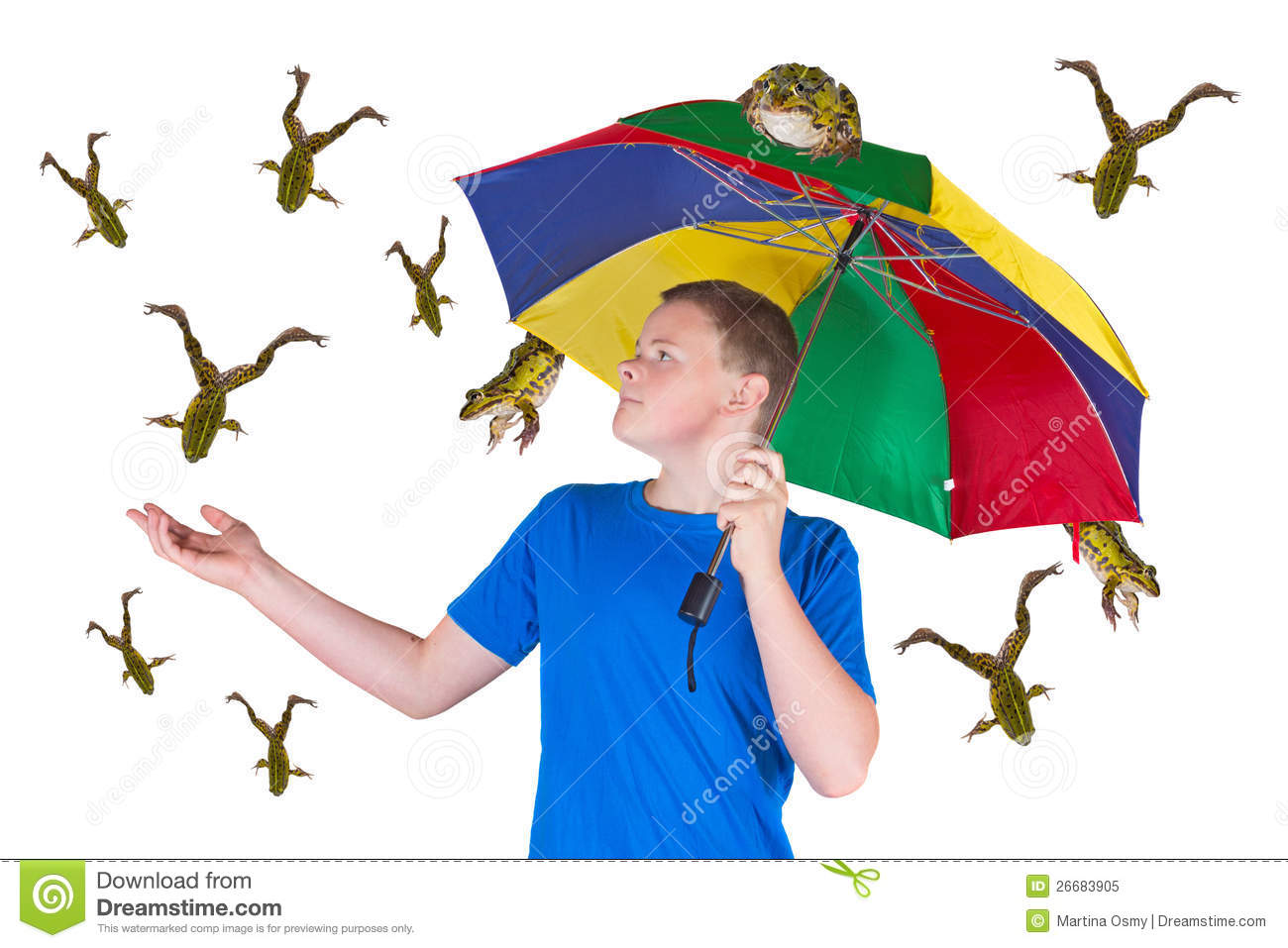Displaying 19> Images For - Raining Frogs...