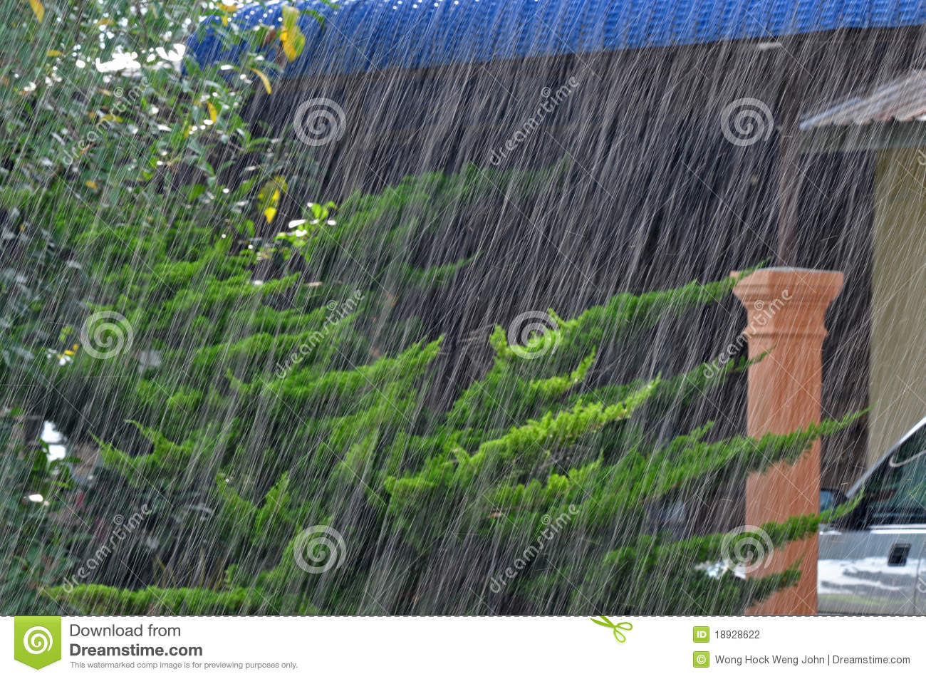 raining heavily What do you call a sudden, very heavy rain downpour  cloudburst.