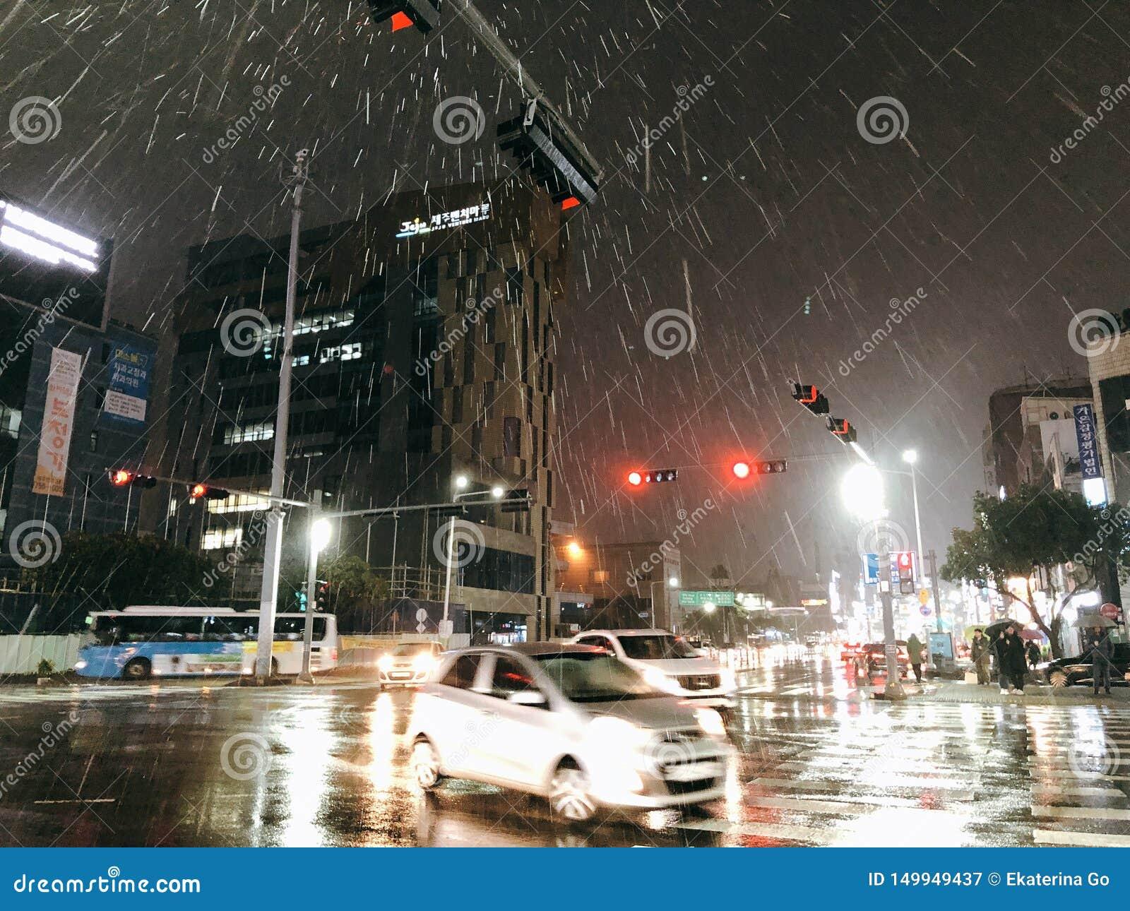 Rainy Jeju Island