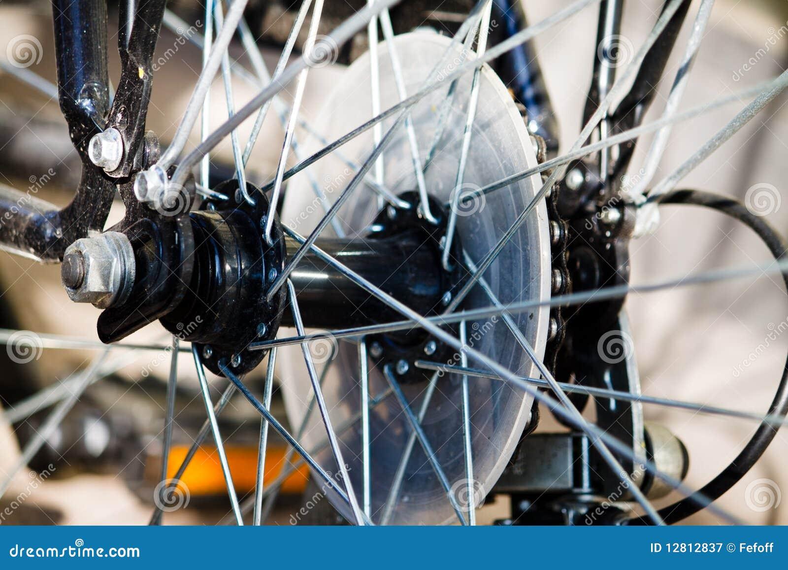Raios de uma bicicleta