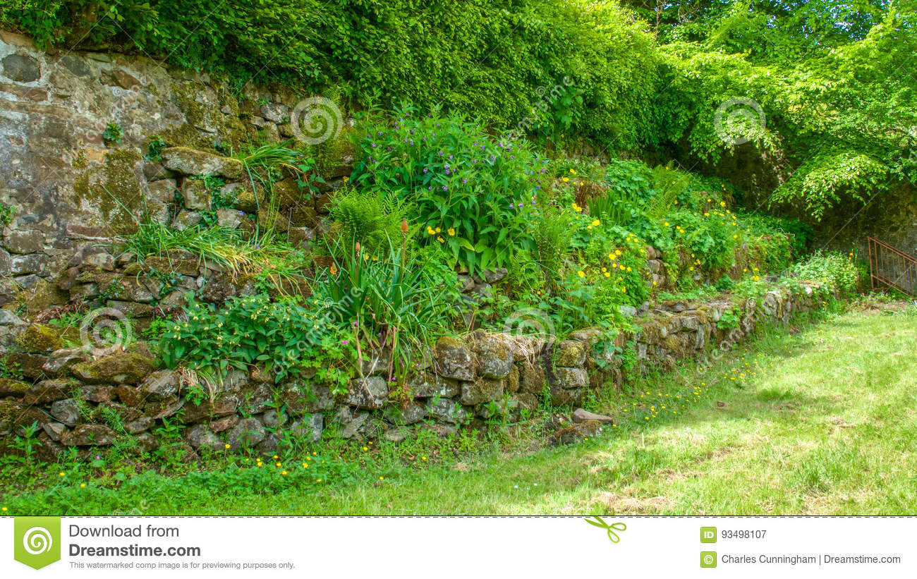 Raised Flower Beds At The Corner Of A Field Stock Image Image Of Beds Grass 93498107