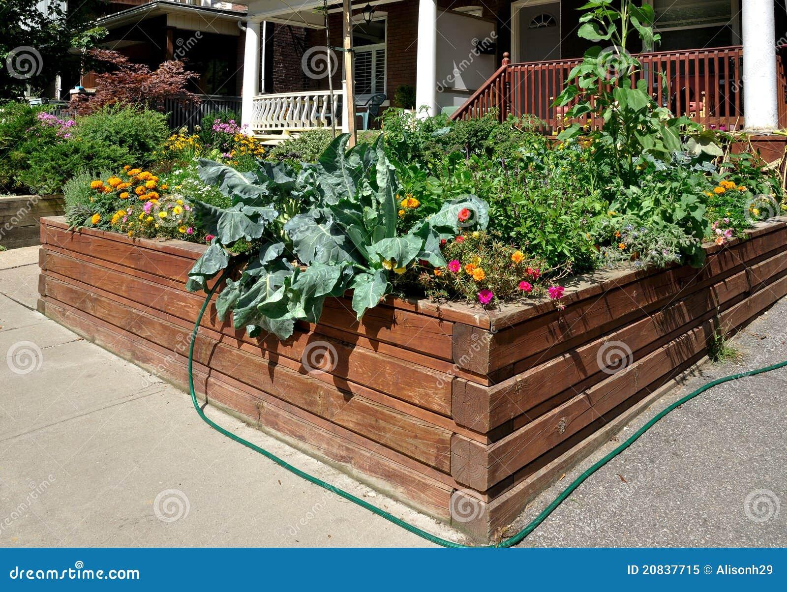 Raised Garden Bed Stock Image Image Of Ecology Ground 20837715