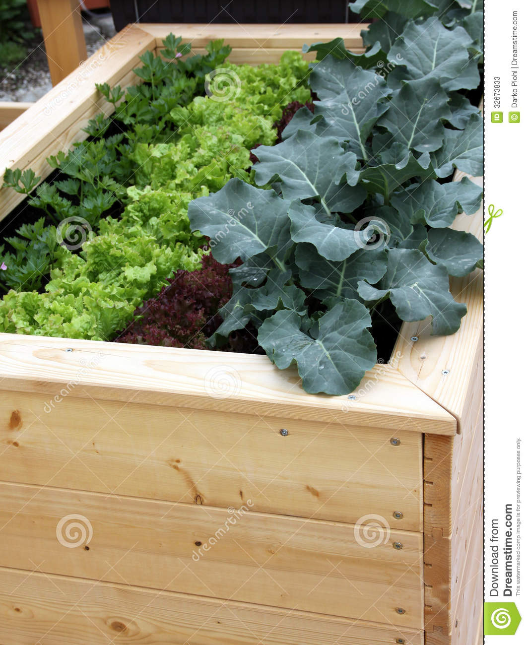Raised Garden Bed For Container Gardening Stock Image