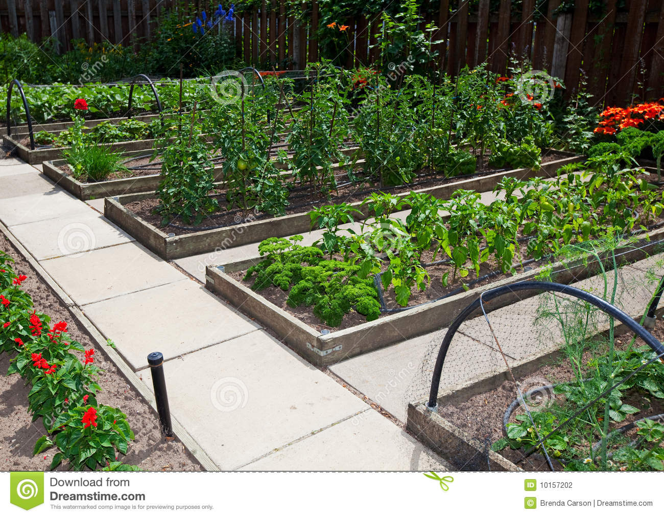 garden design with raised vegetable garden beds stock photography image with landscaping borders from dreamstime