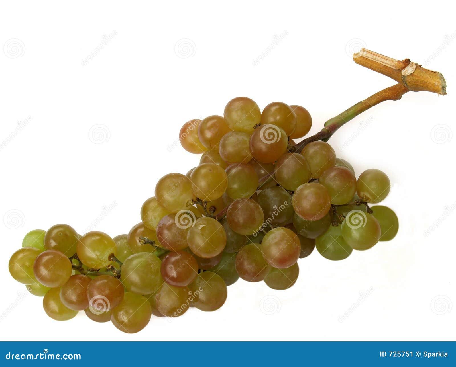 Raisins de muscat