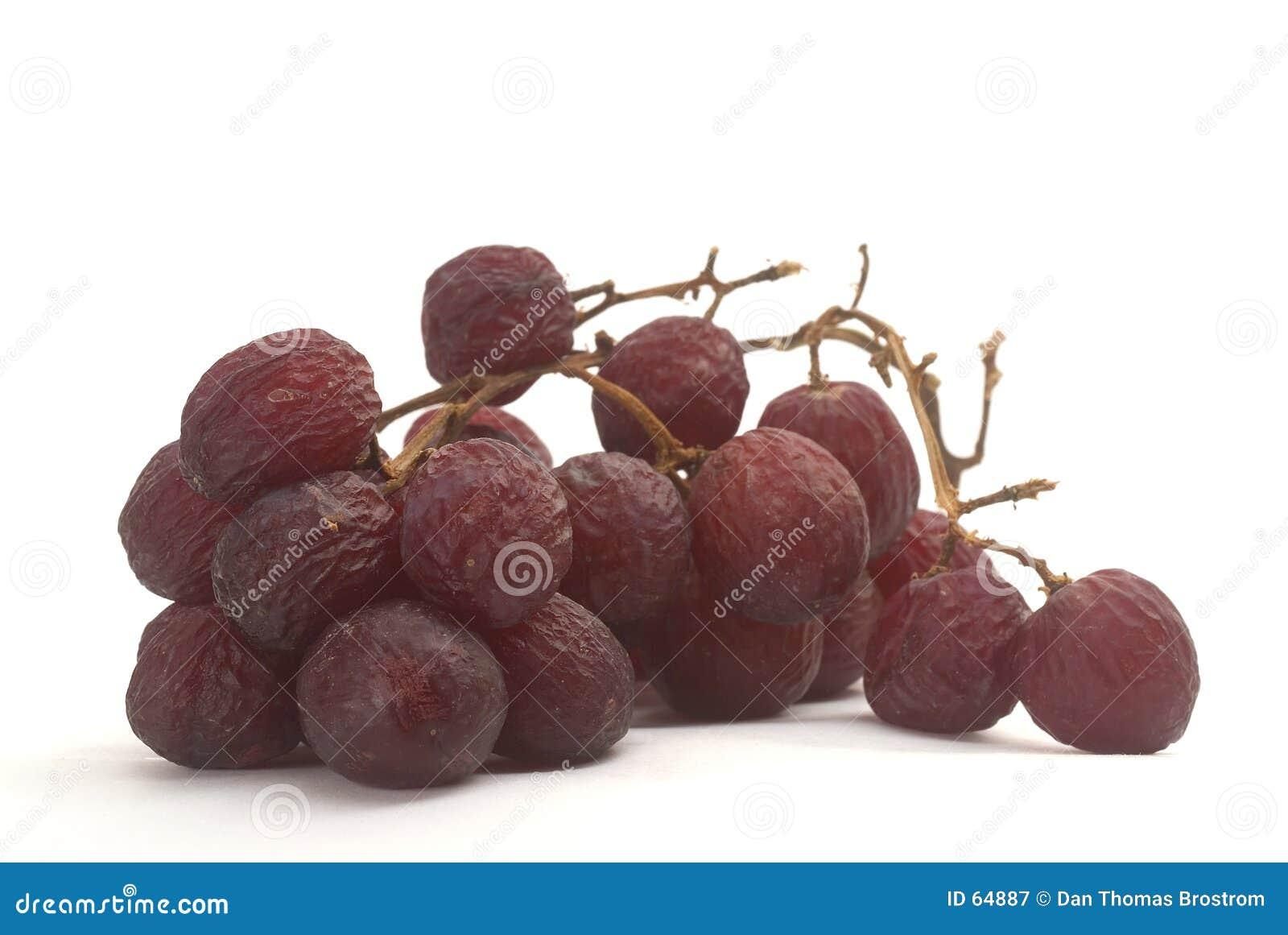 Download Raisins de vieillissement image stock. Image du fruit, vieillissement - 64887