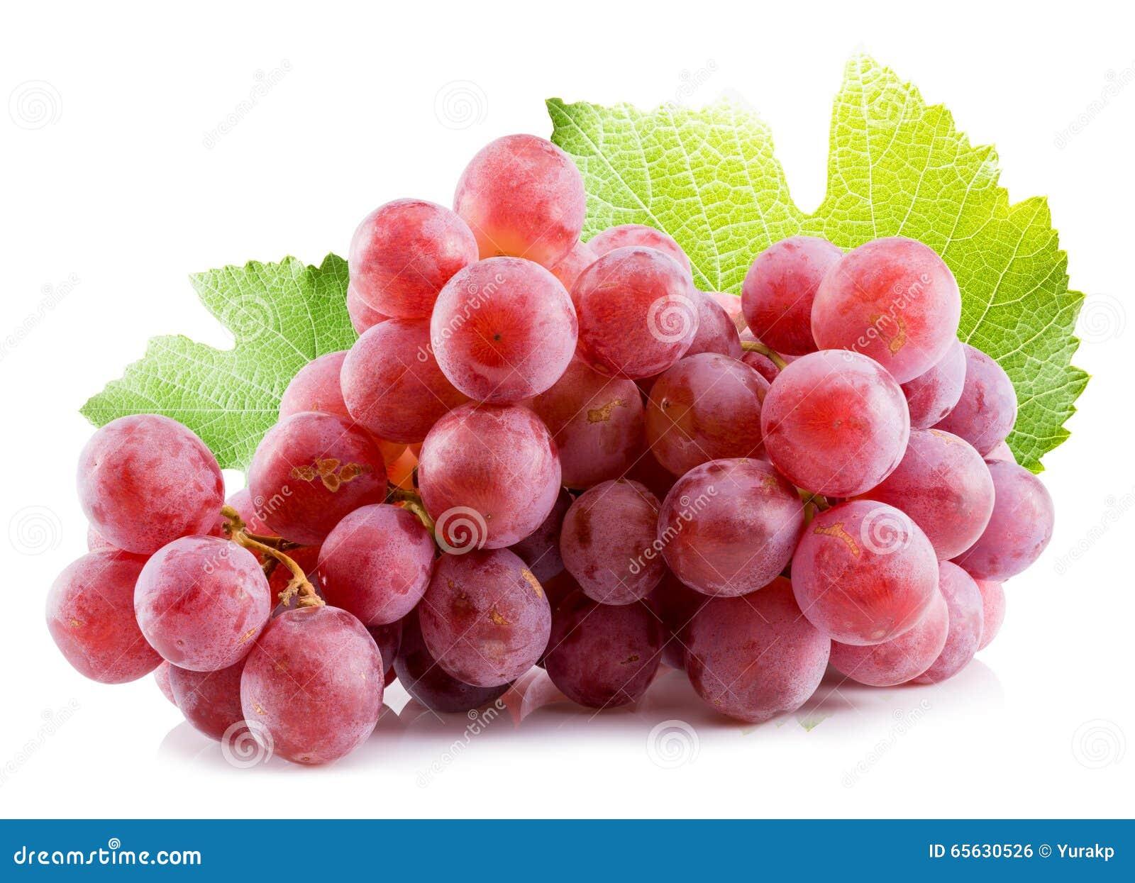 Raisins roses d isolement sur le fond blanc