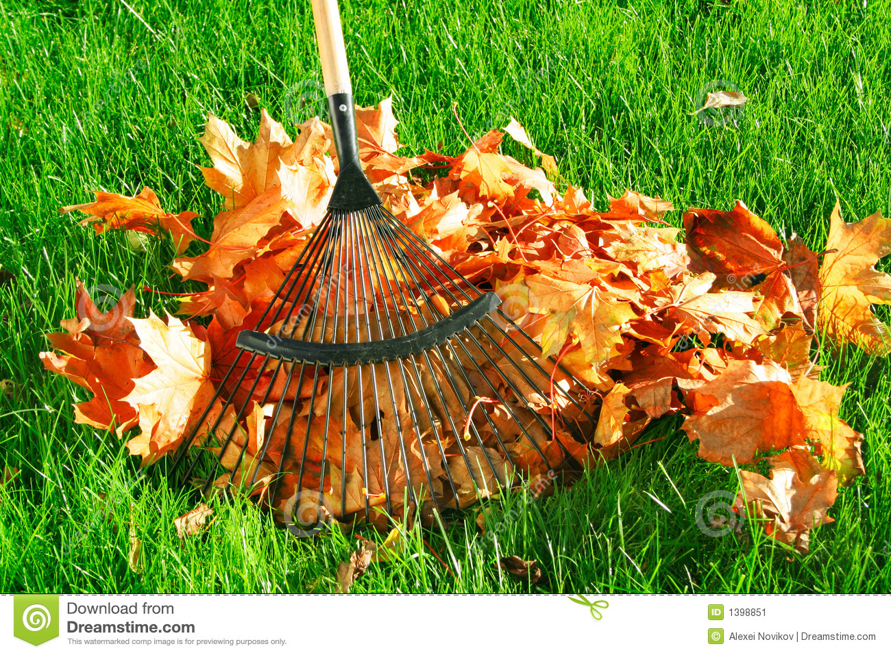 Raking The Autumn Leaves Stock Image - Image: 1398851