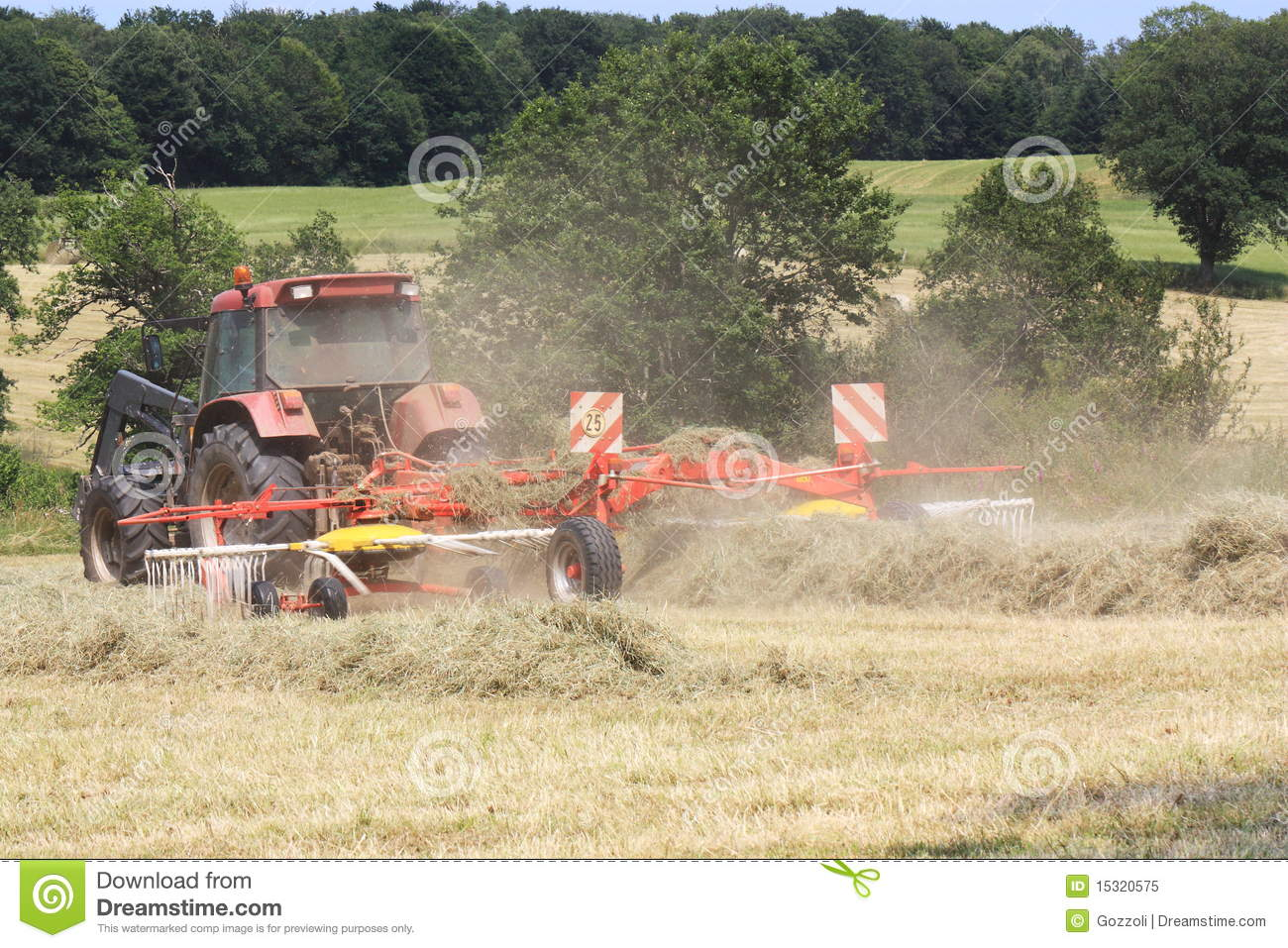Raking Hay #1 stock image  Image of cultivated, implement