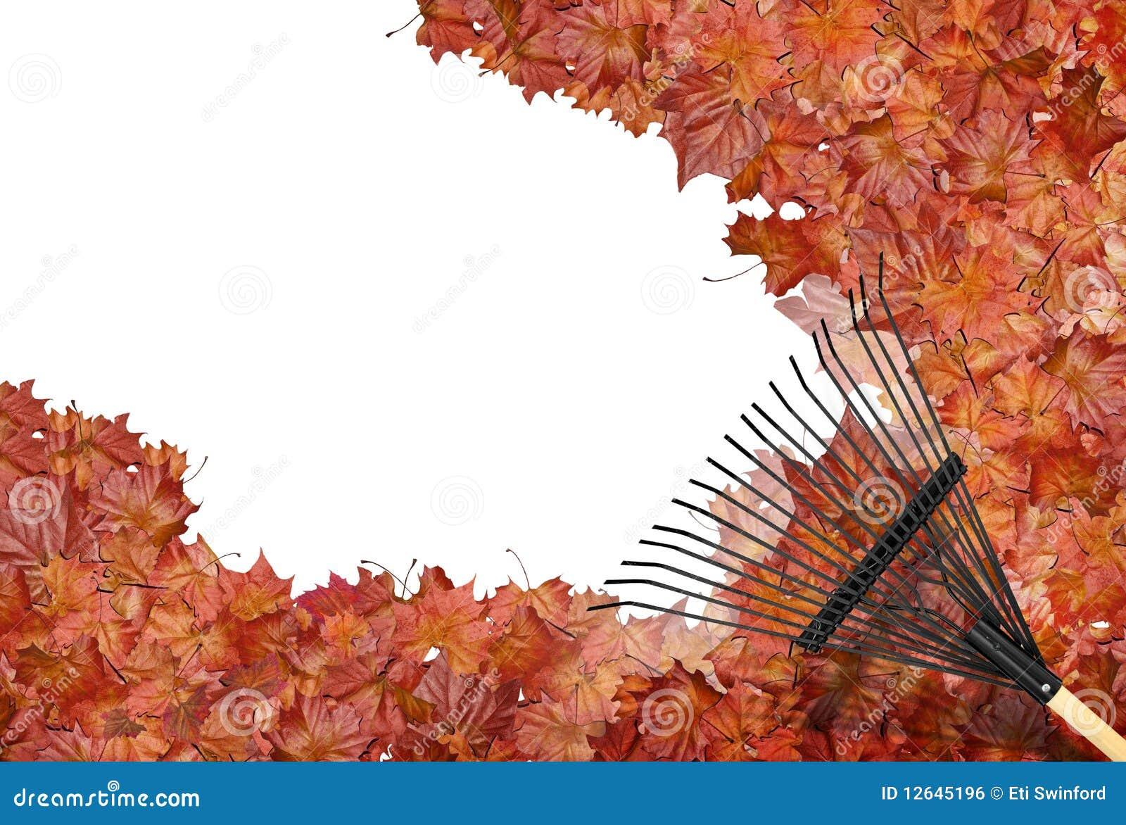 Raking Leaves Stock Photo Image Of Environmental