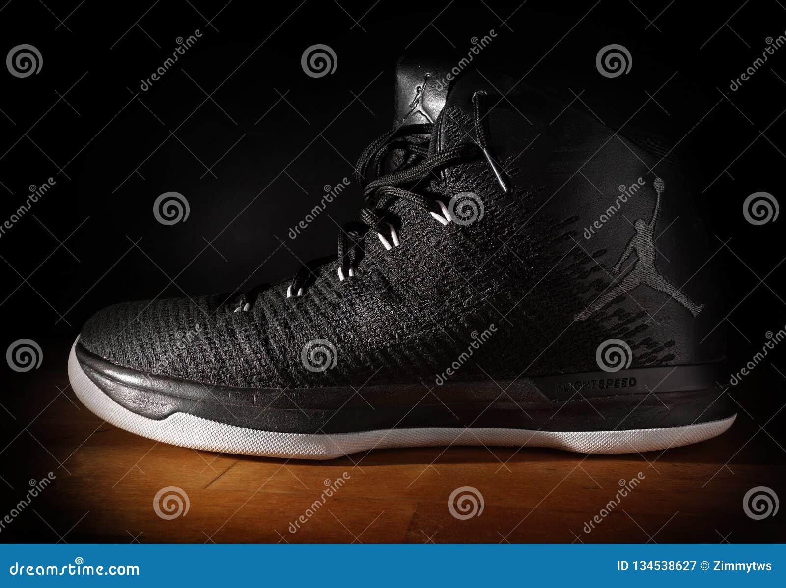 Nike Air Jordan FlightSpeed Basketball