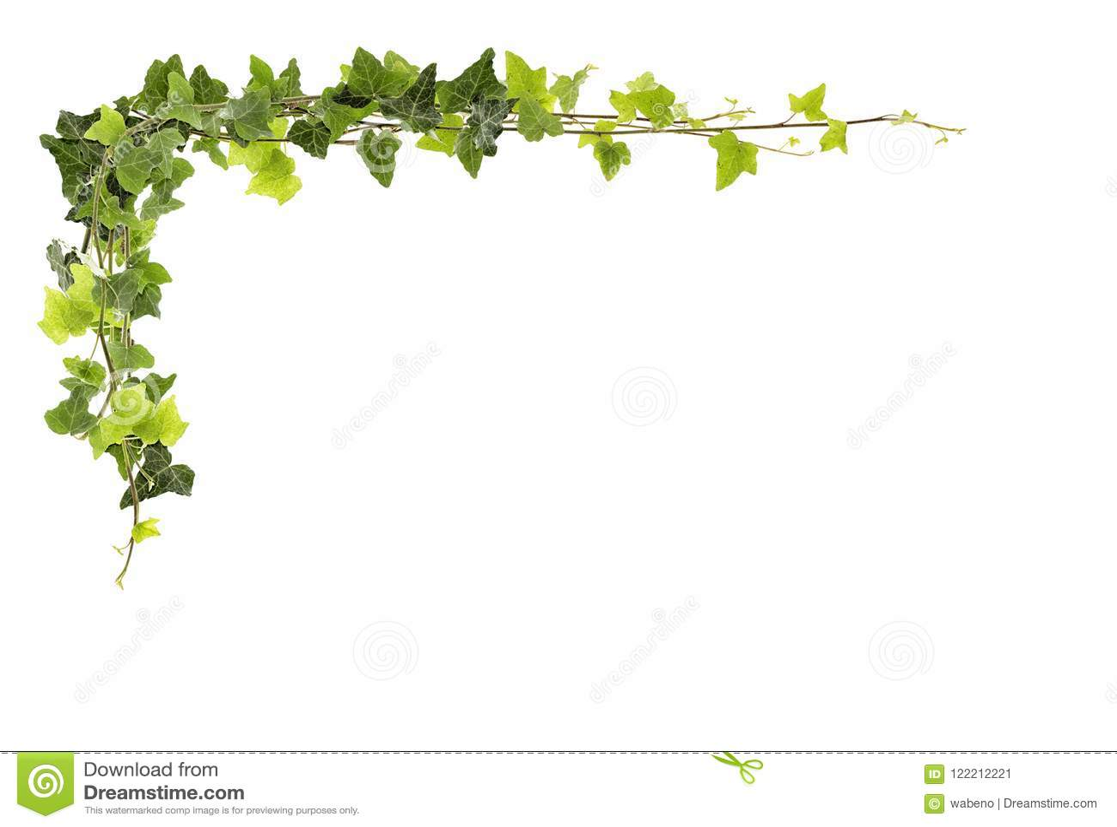 Ram av murgrönan