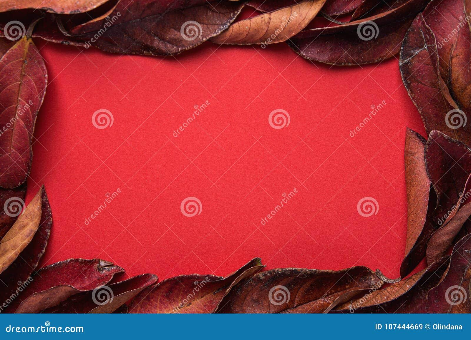 Ram från mörker - röda sidor med tomt kopieringsutrymme för text Rich Vibrant Crimson Color Valentin för tacksägelsenedgångmode
