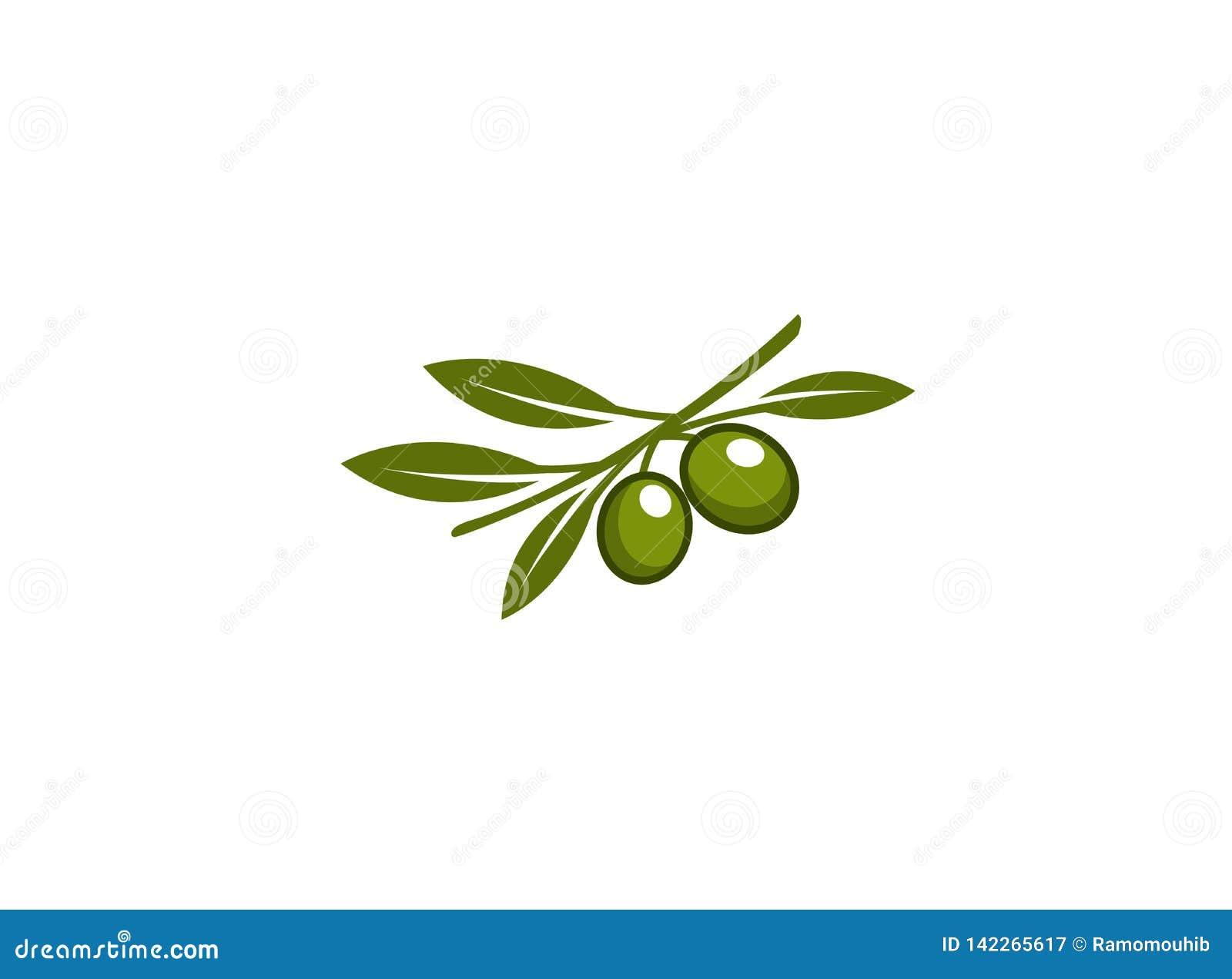Rama de la aceituna con las hojas verdes olivas y verdes para el logotipo