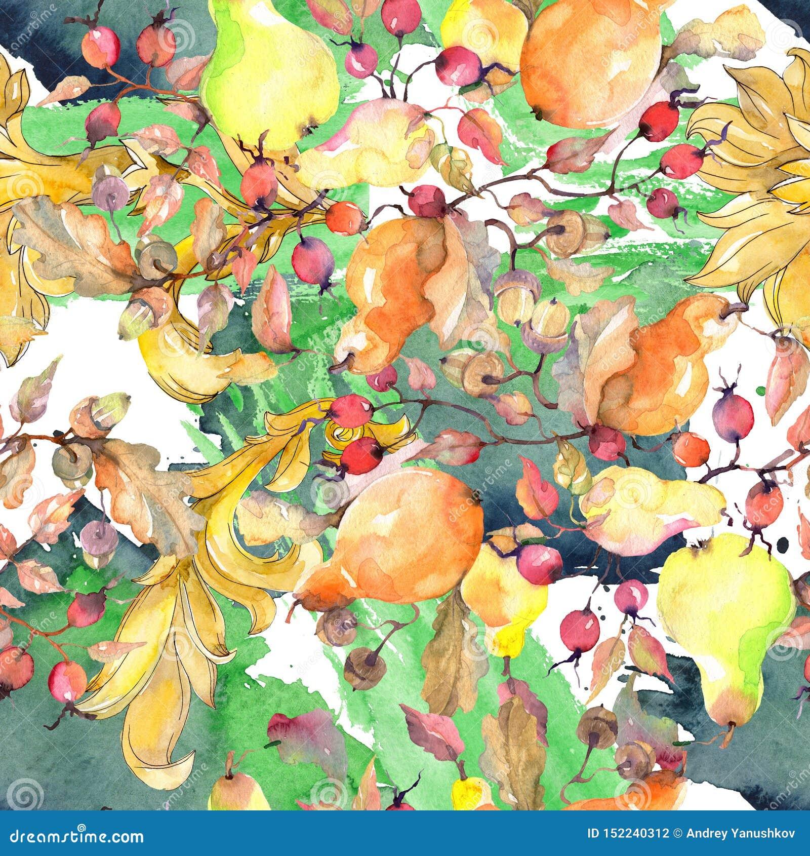 Rama de peras con la fruta de los escaramujos Sistema del ejemplo del fondo de la acuarela Modelo incons?til del fondo