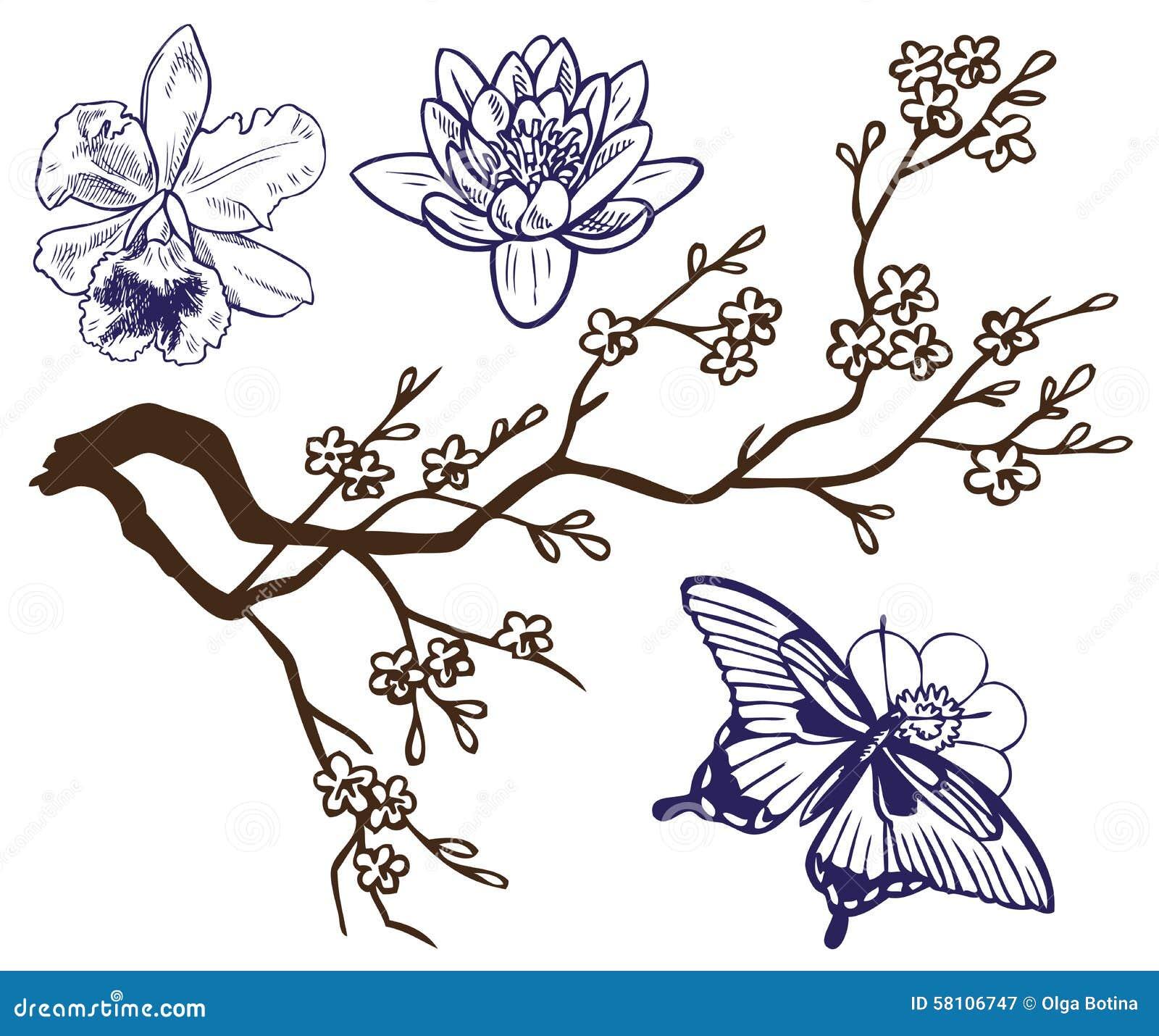 Rama Del Dibujo Con Las Flores Y Las Mariposas Ilustración Del