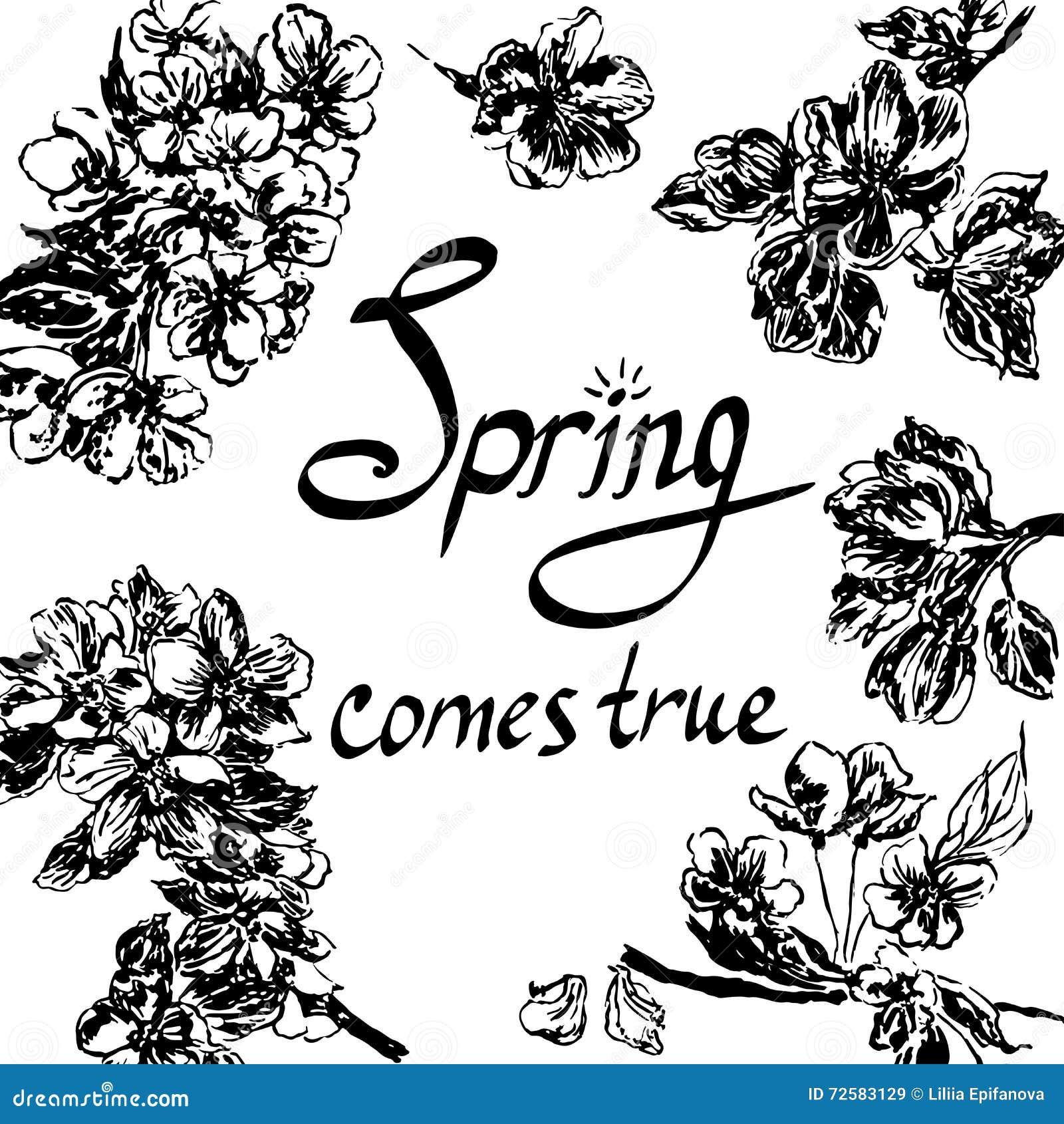 Rama kwiaty jabłczana nakreślenie ilustracja