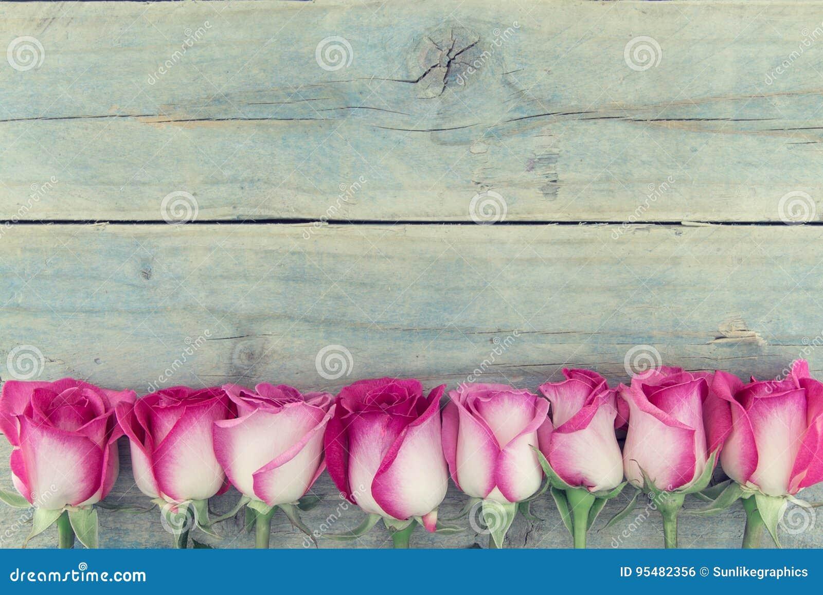 Rama różowe róże na turkusowym nieociosanym drewnianym tle z c