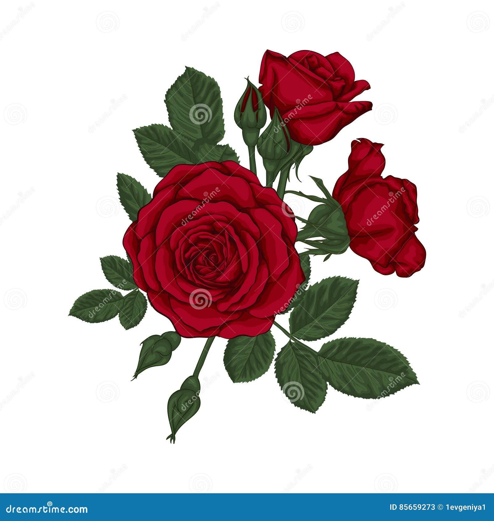 Ramalhete Bonito Com Rosas Vermelhas E Folhas Arranjo Floral