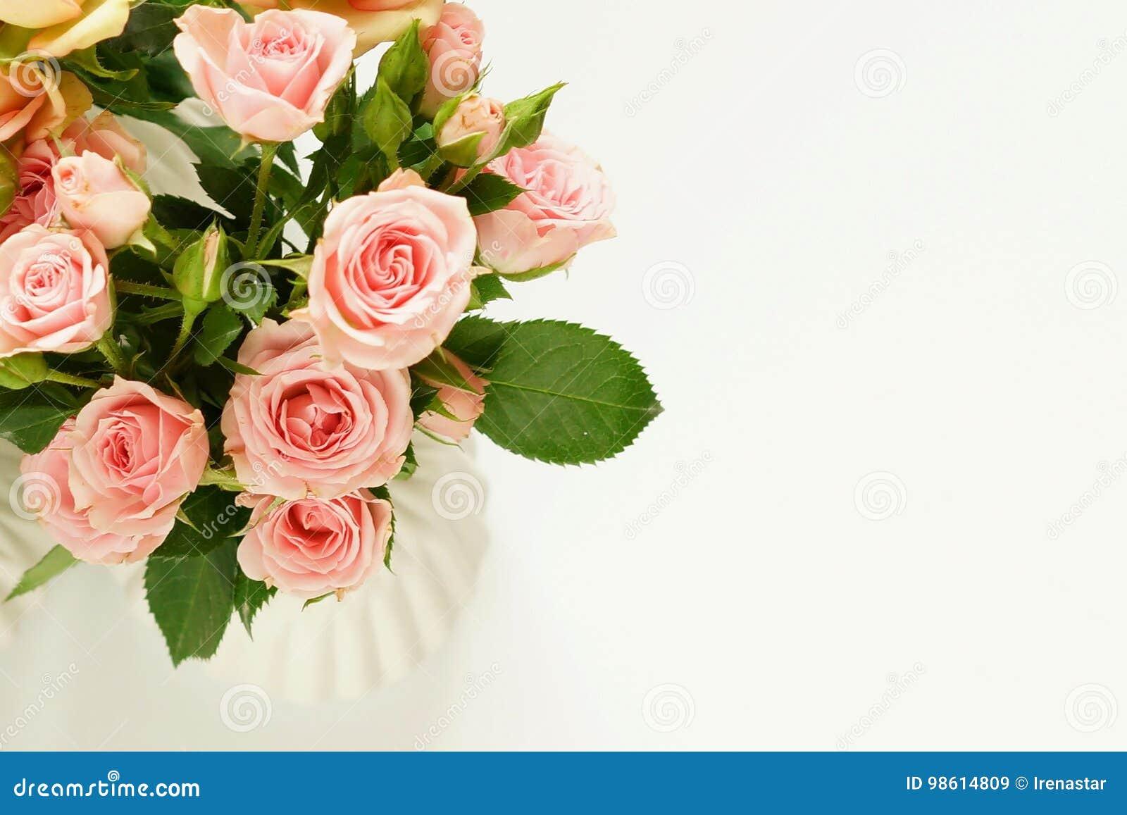 Ramalhete bonito de Pale Pink Roses