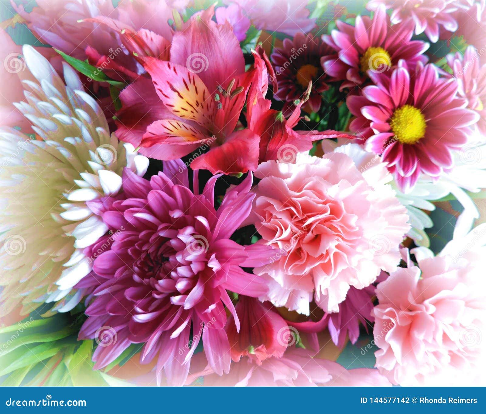 Ramalhete colorido bonito de flores da primavera com borda macia em torno da beira
