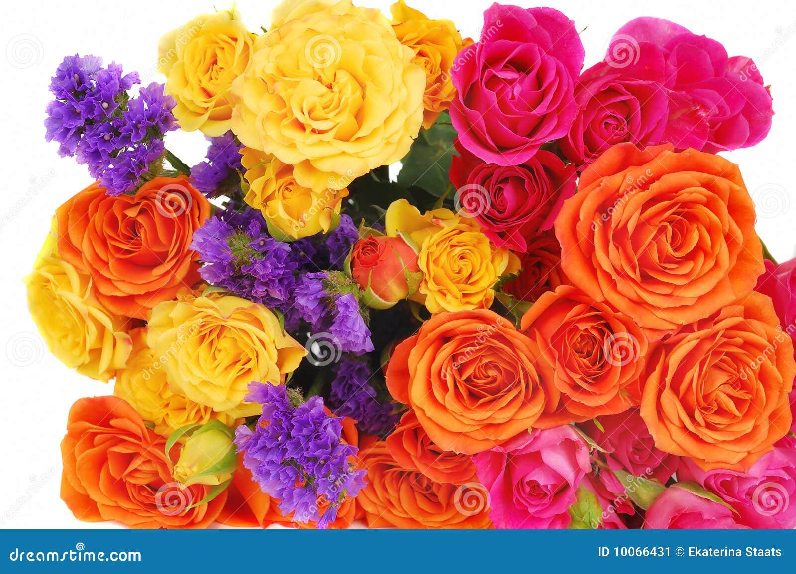 Ramalhete das rosas da cor isolado