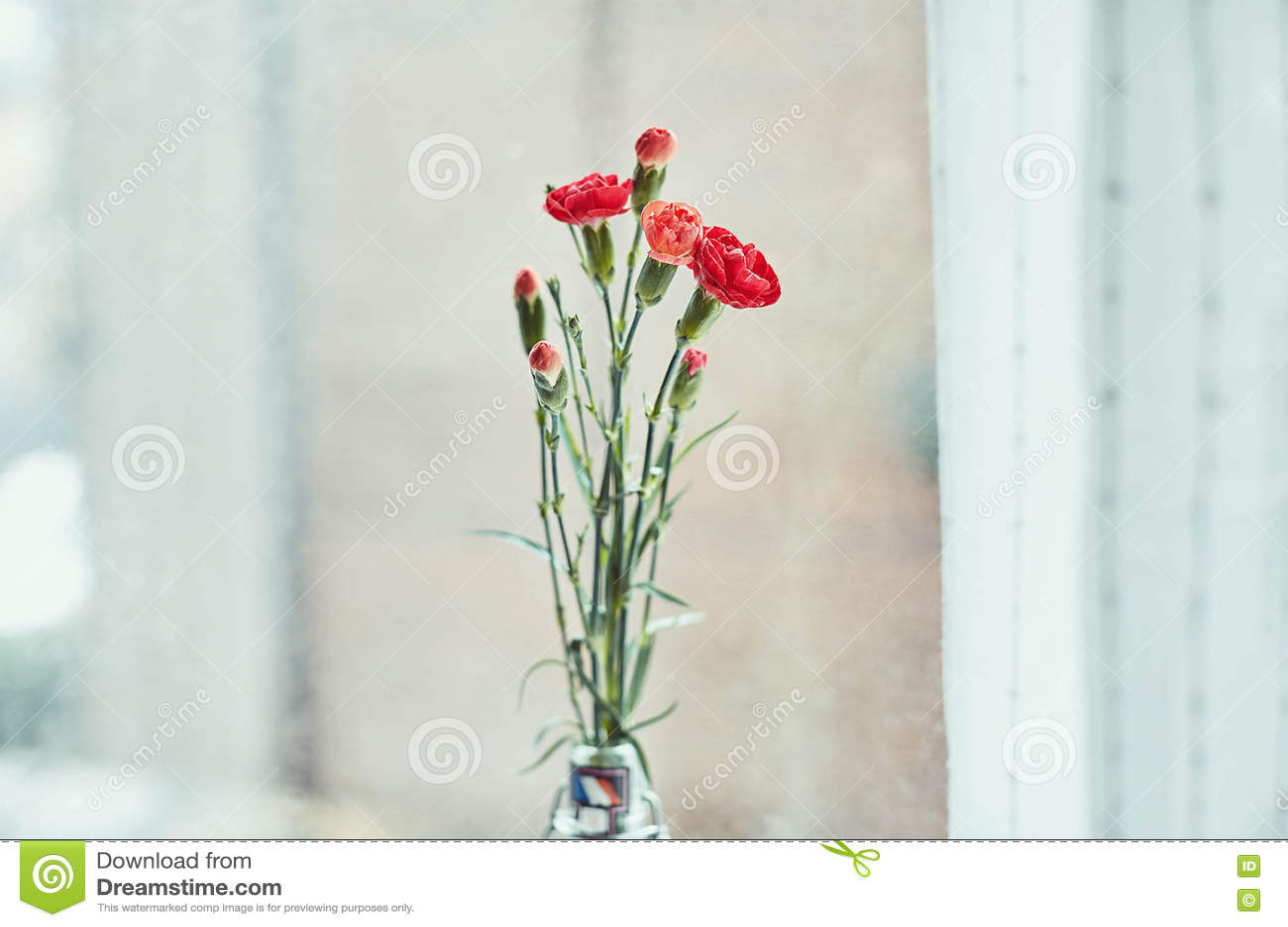 Ramalhete de cravos vermelhos pela janela