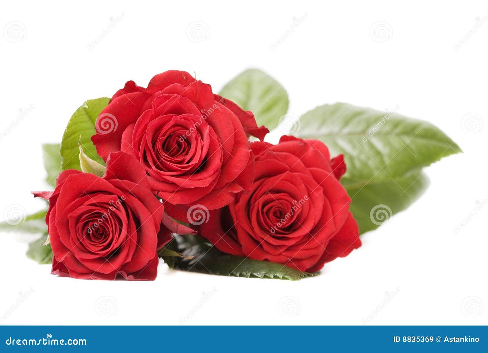 Ramalhete de rosas vermelhas