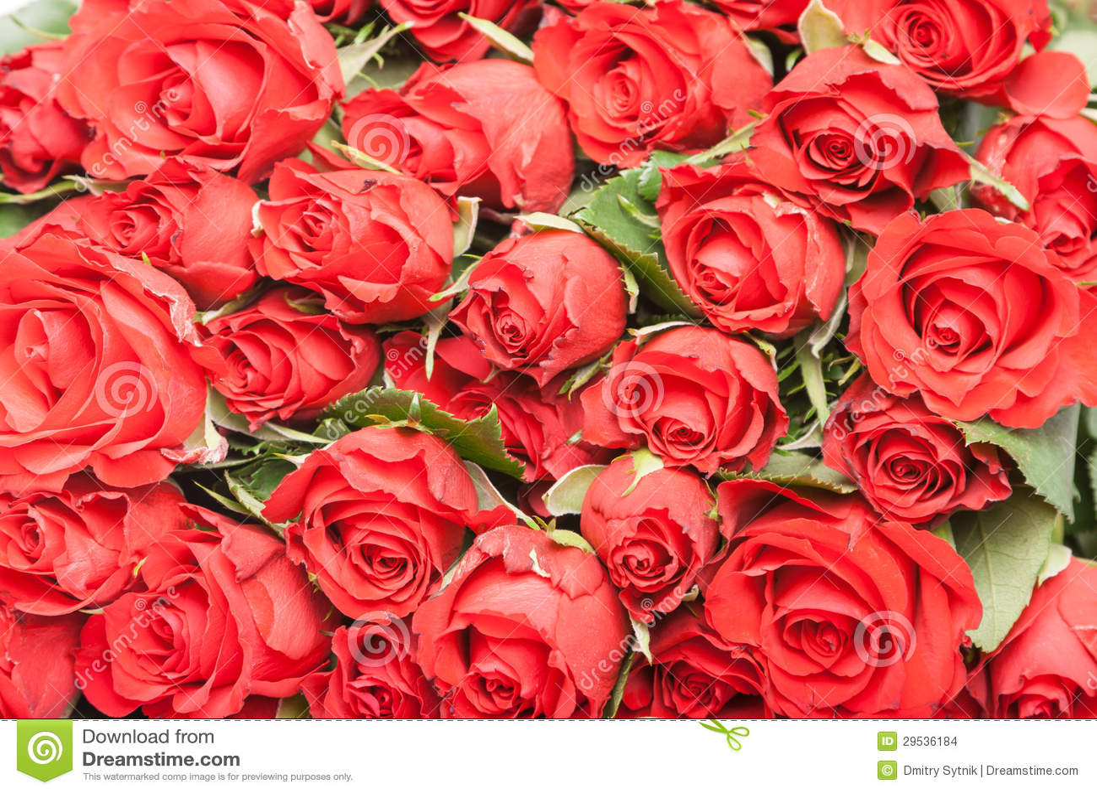 Ramalhete de rosas vermelhas para o fundo romântico do presente