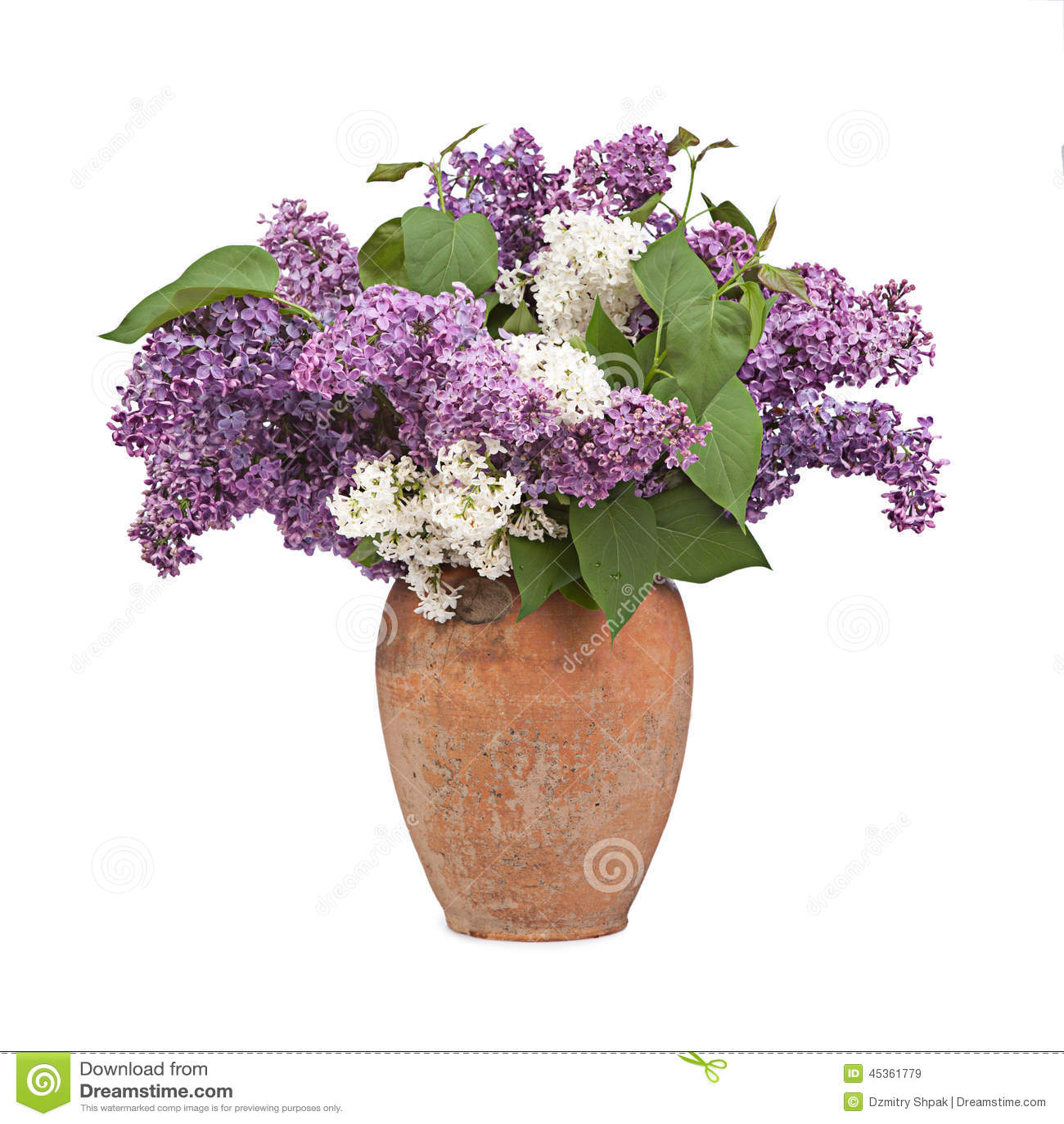 Ramalhete de um lilás no vaso cerâmico no branco