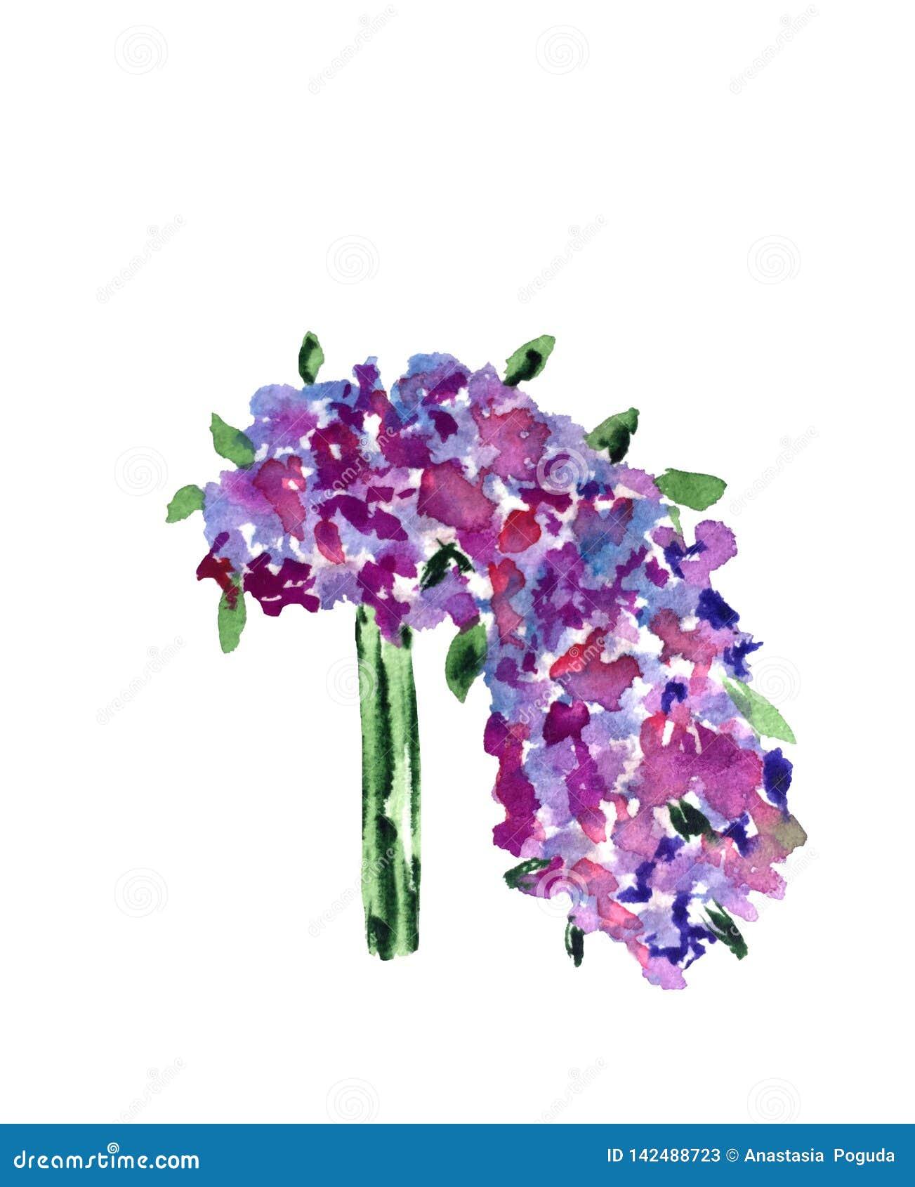 Ramalhete do casamento da aquarela de flores selvagens de lilás, do rosa e de cores azuis