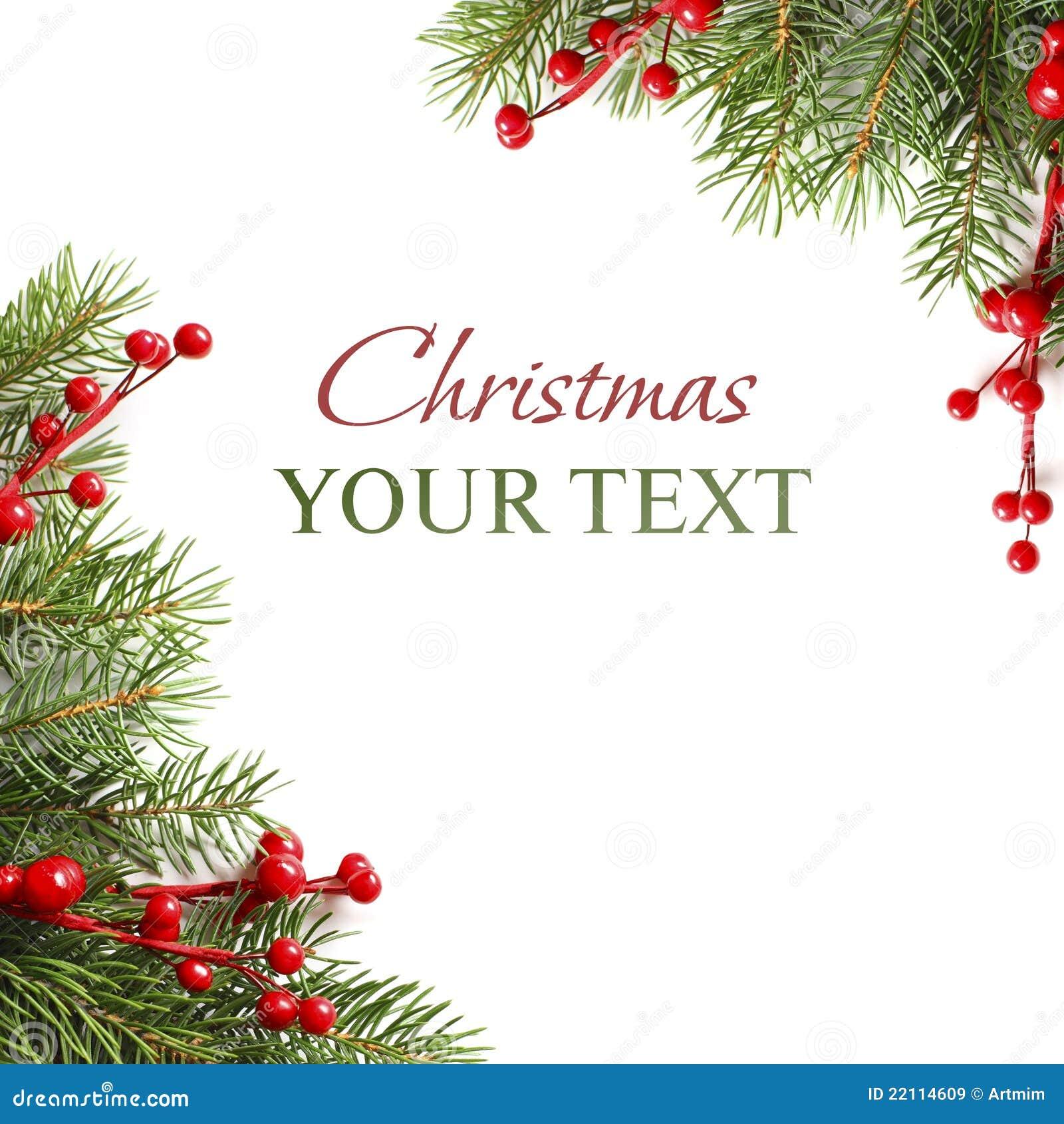 Ramificación de árbol verde de la Navidad en blanco